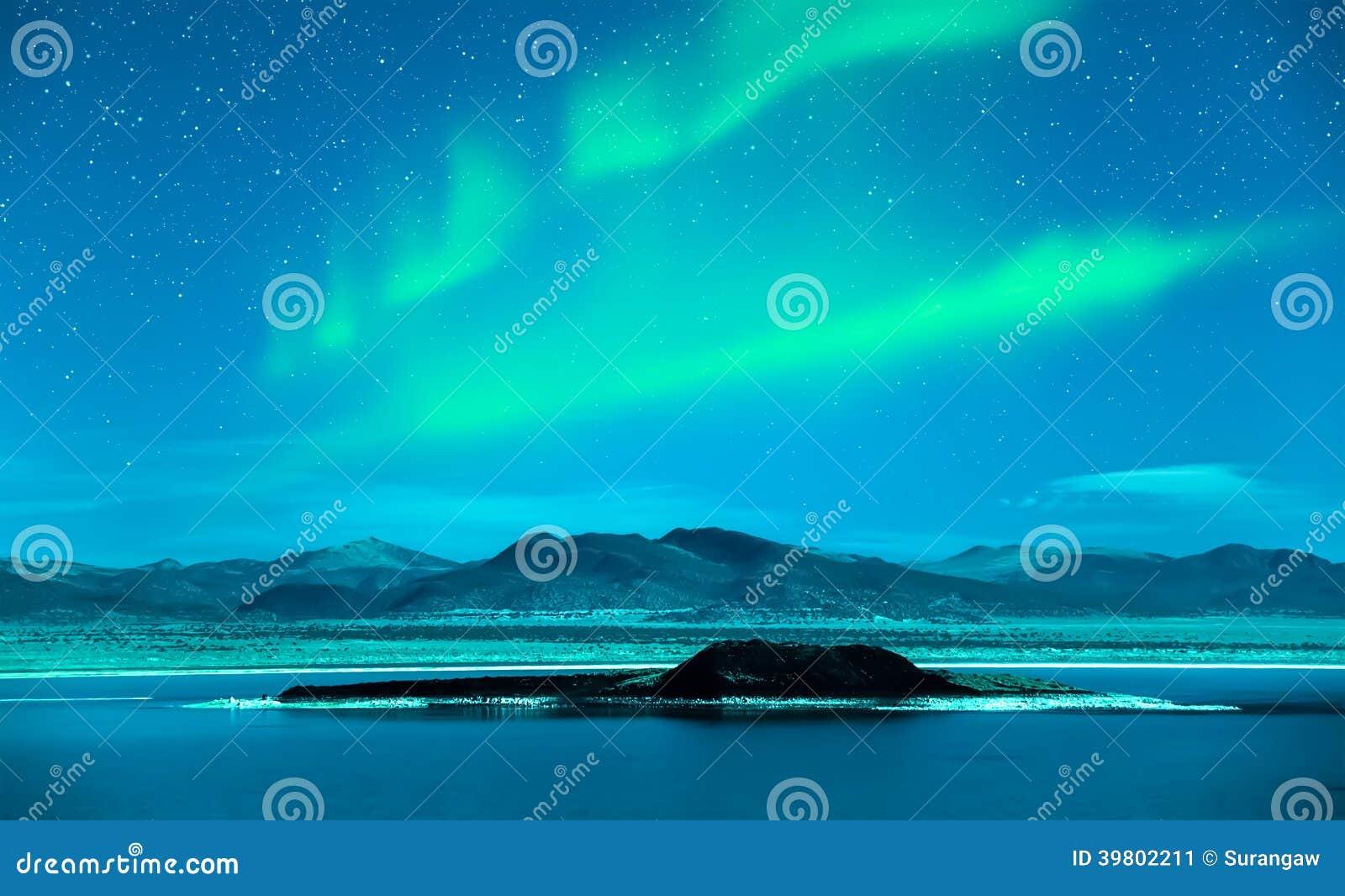 Północnych świateł zorzy borealis nad drzewami