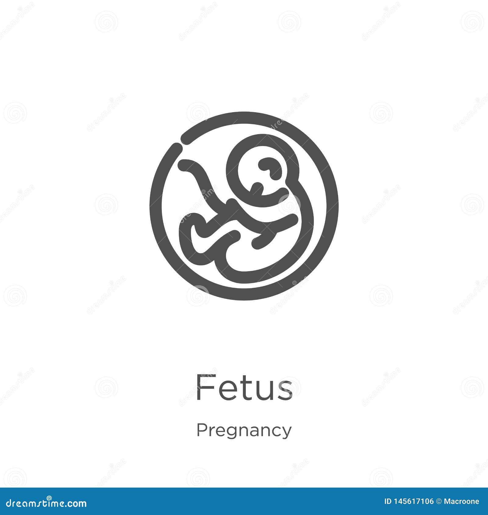 Płód ikony wektor od ciążowej kolekcji Cienka kreskowa p?odu konturu ikony wektoru ilustracja Kontur, cienieje kreskową płód ikon