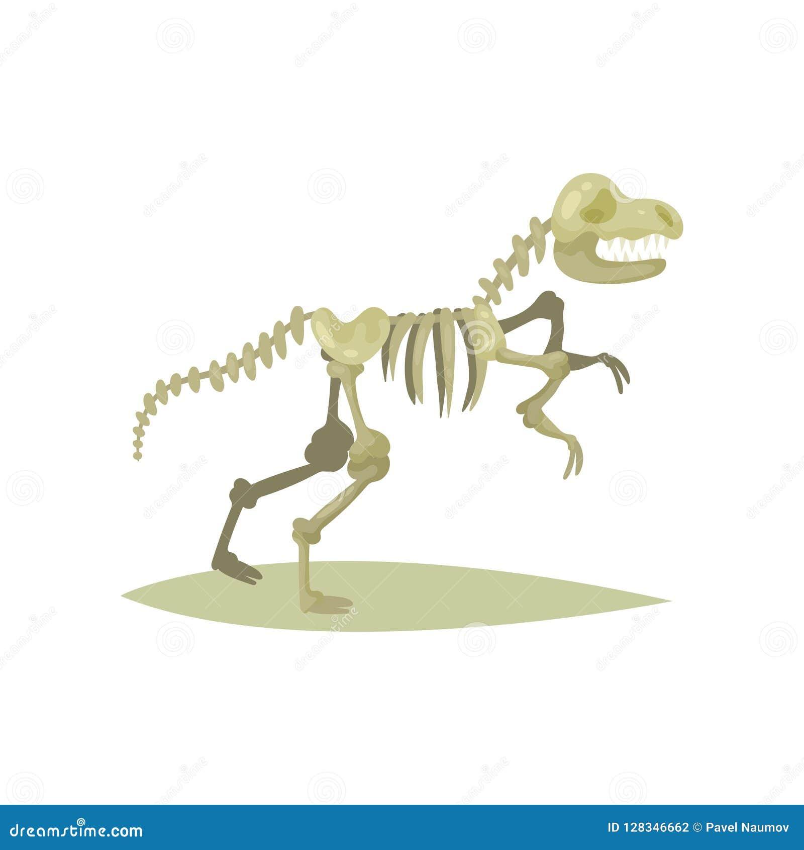 Płaska wektorowa ikona dinosaura kościec Tyrannosaurus Rex Kości prehistoryczny gad Skamieniały eksponat Antyczny muzeum