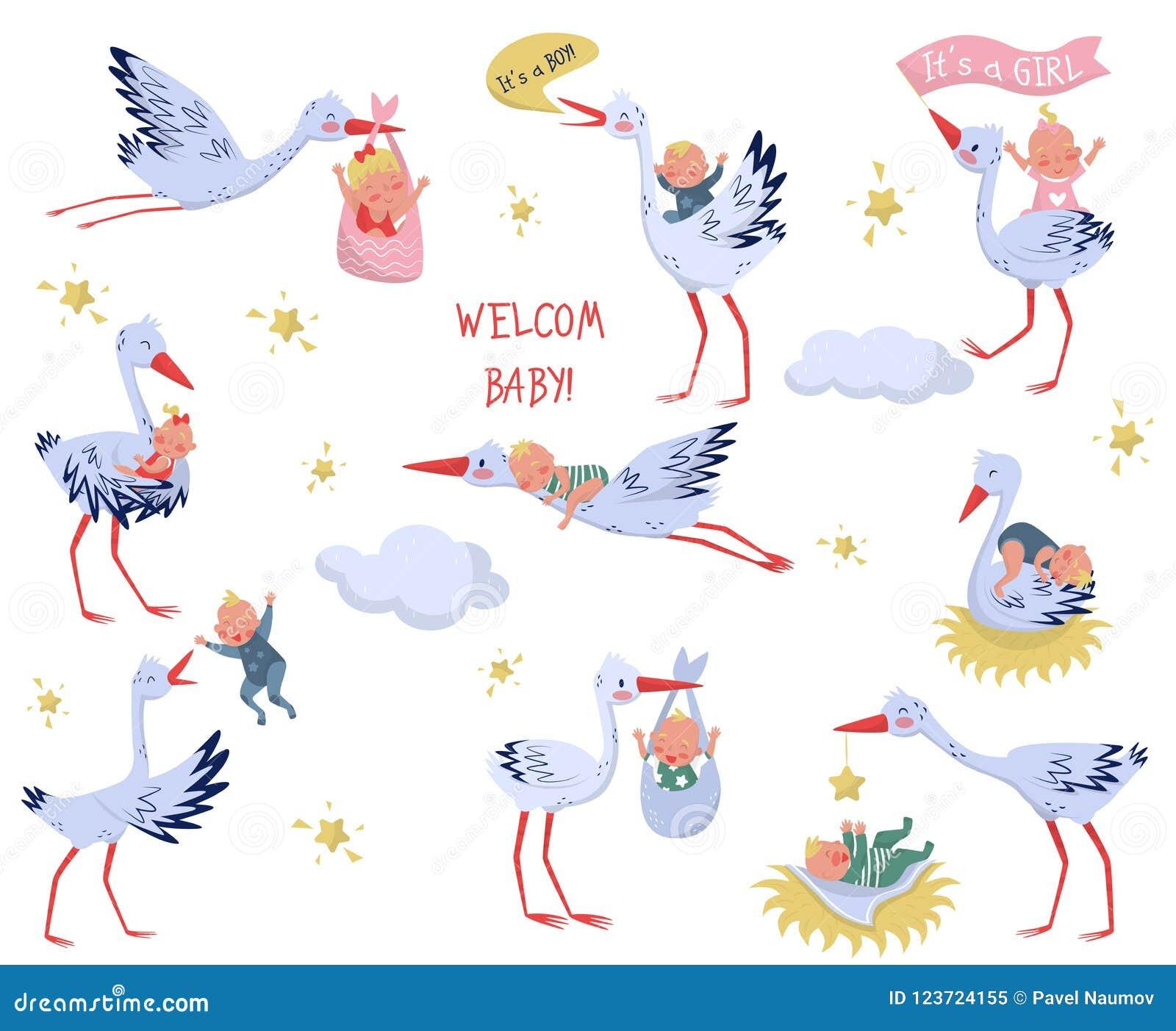 Płaski wektorowy ustawiający biali bociany z dziećmi Uroczy ptaki i nowonarodzeni dzieciaki Elementy dla dziecka kartka z pozdrow