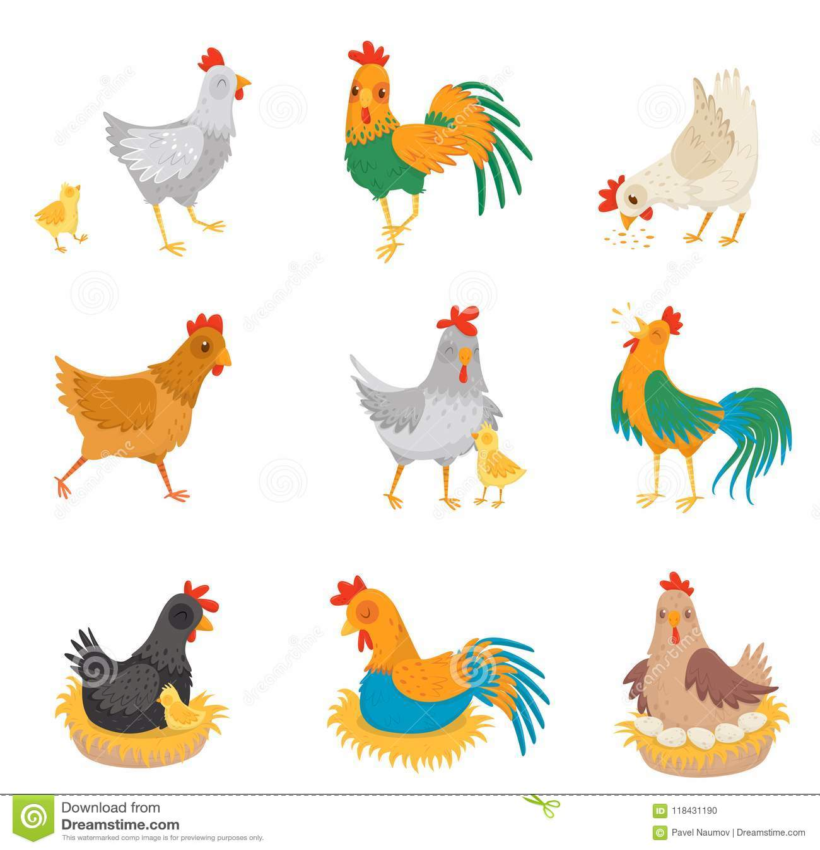 Płaski wektorowy ustawiający z kurczakami, małymi kurczątkami i kogutami, Rolni ptaki ptactwo domowe Elementy dla reklamowego pla