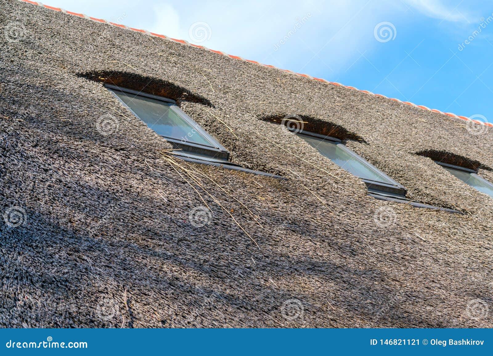 Płocha dach dom w antycznej wiosce Tradycyjny pokrywający strzechą dach od płochy, słoneczny dzień Dach robić naturalne płochy