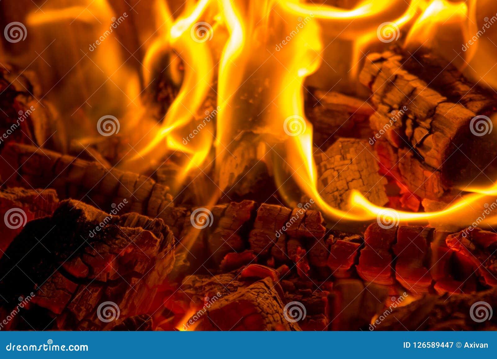 Płonącego zakończenia drewniani węgle w grabie