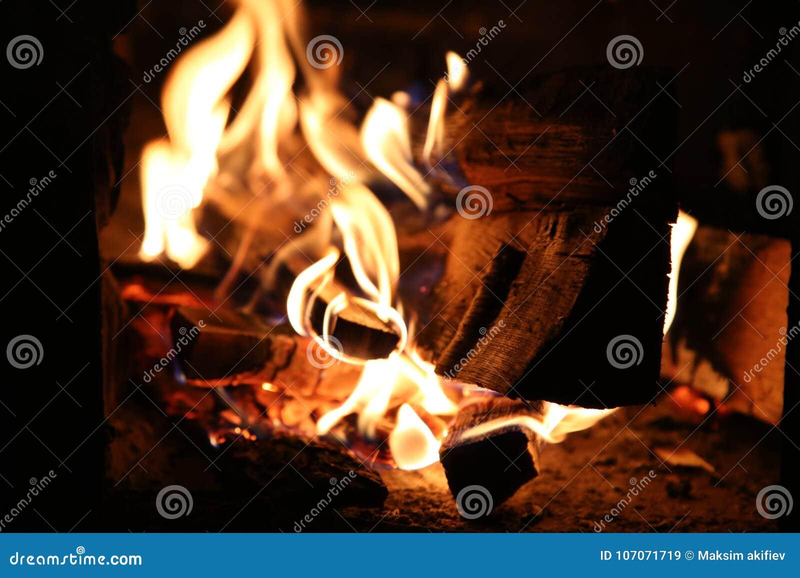 Płonący drewno w piecowych zakończenia i czerwieni węglach płomienie