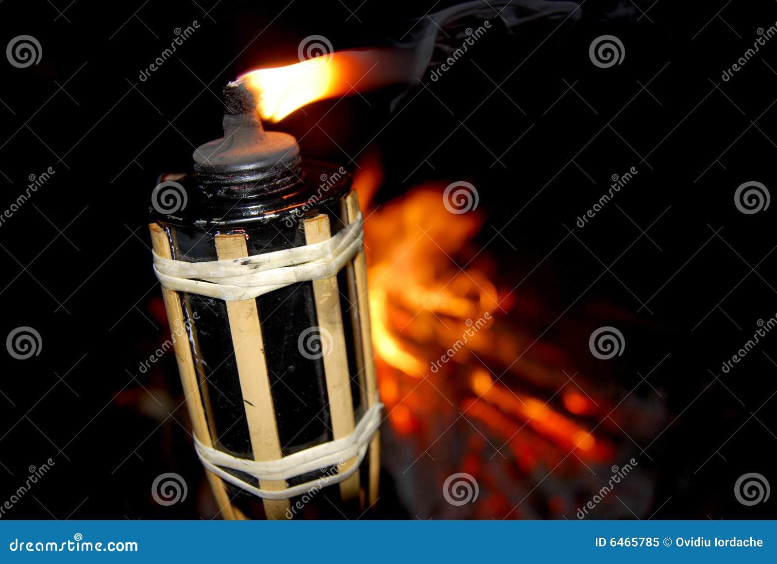 Płonący pochodni drewna