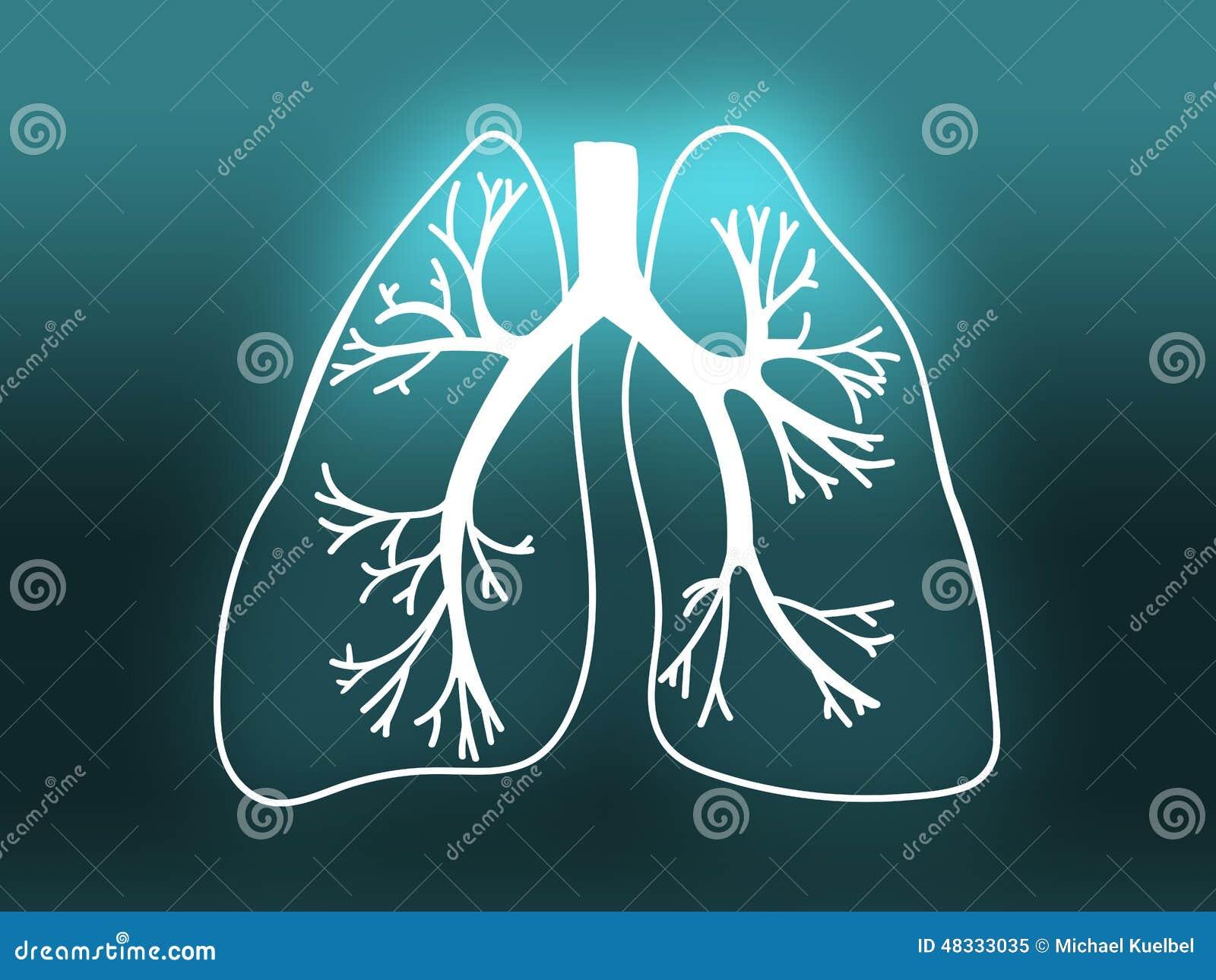 Płuco biologii medycyny nauki Organowy turkus