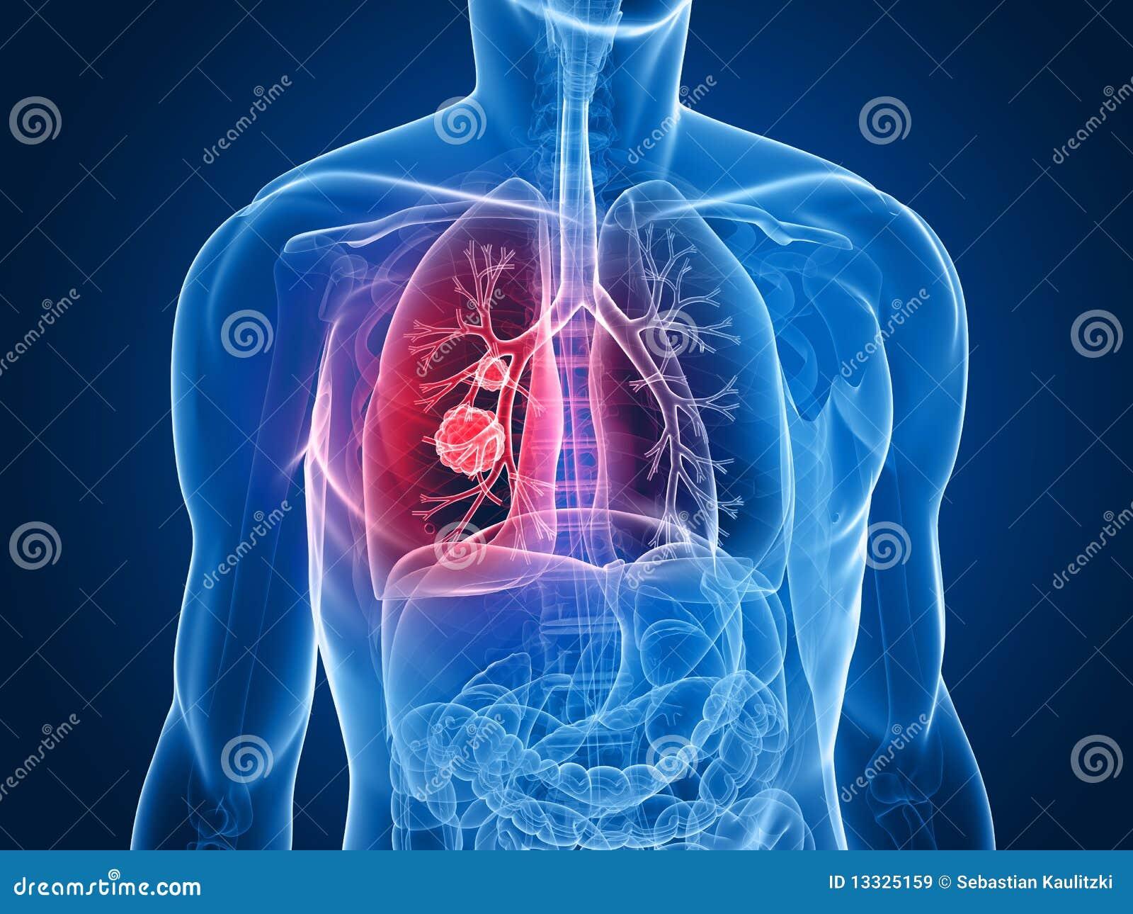 Płuco bolak