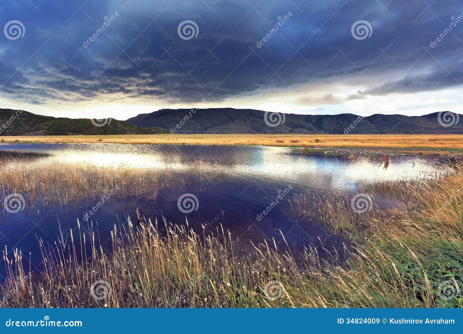 Płytki jezioro, przerastający z płochami