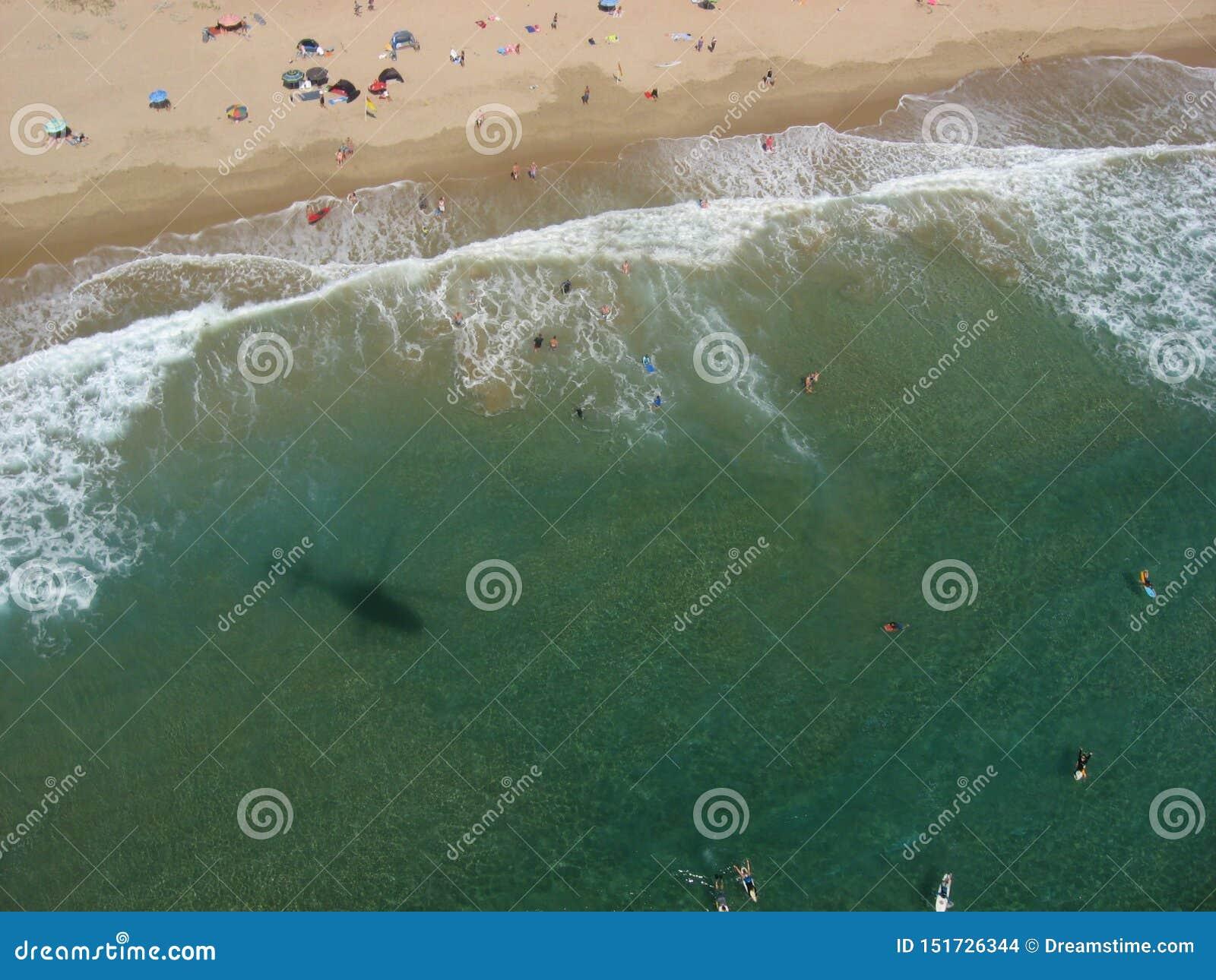 Pływaccy ludzie na plaży