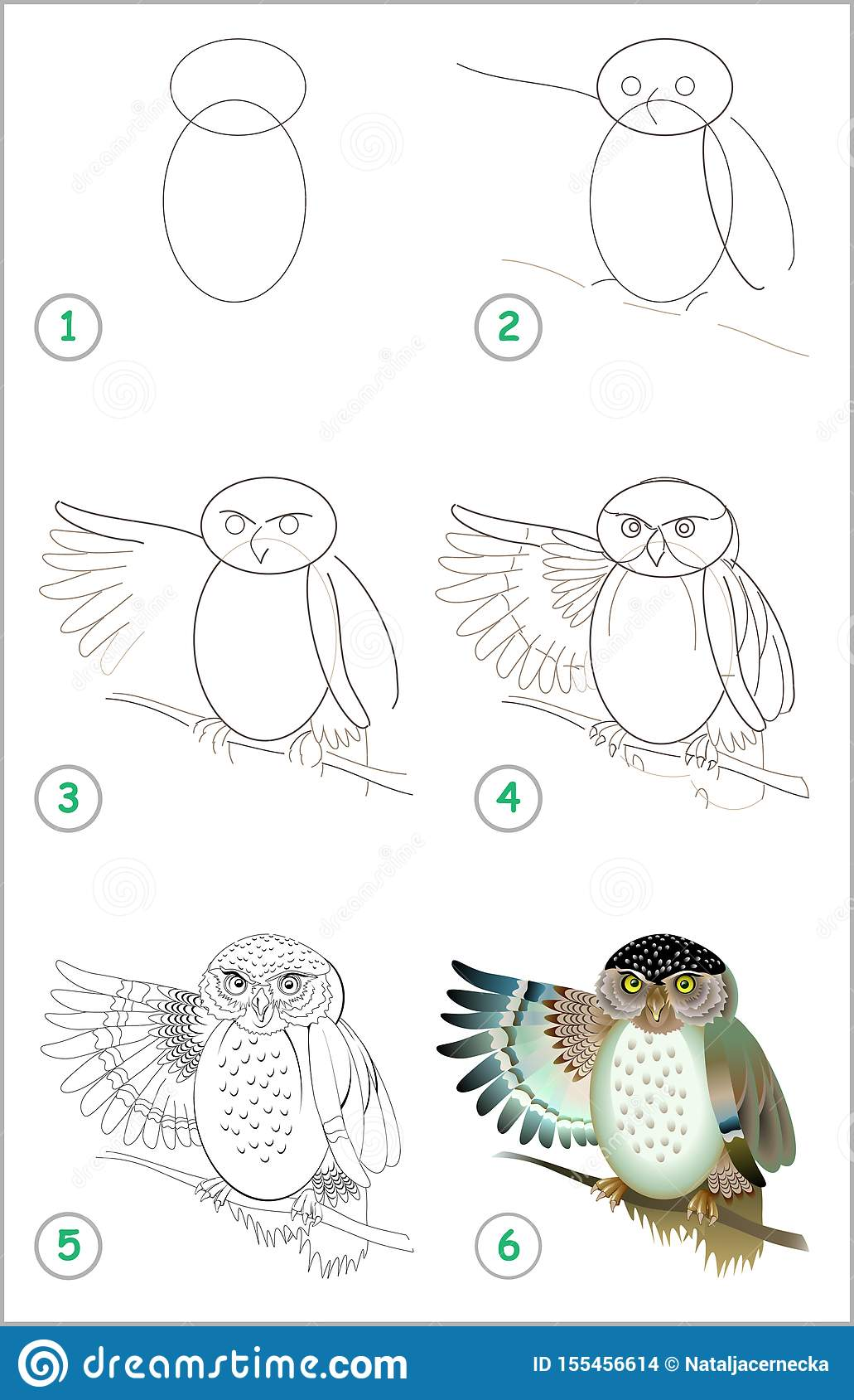 Educational Page for Kids. How To Draw Step by Step a Cute Owl ...