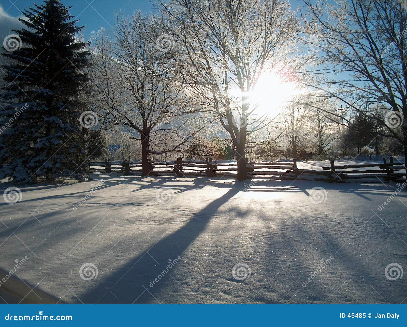 País das maravilhas do inverno