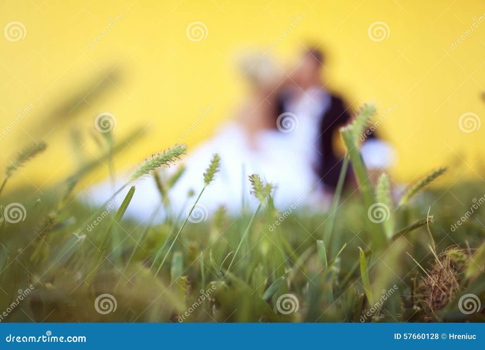 Państwa młodzi obsiadanie w trawie