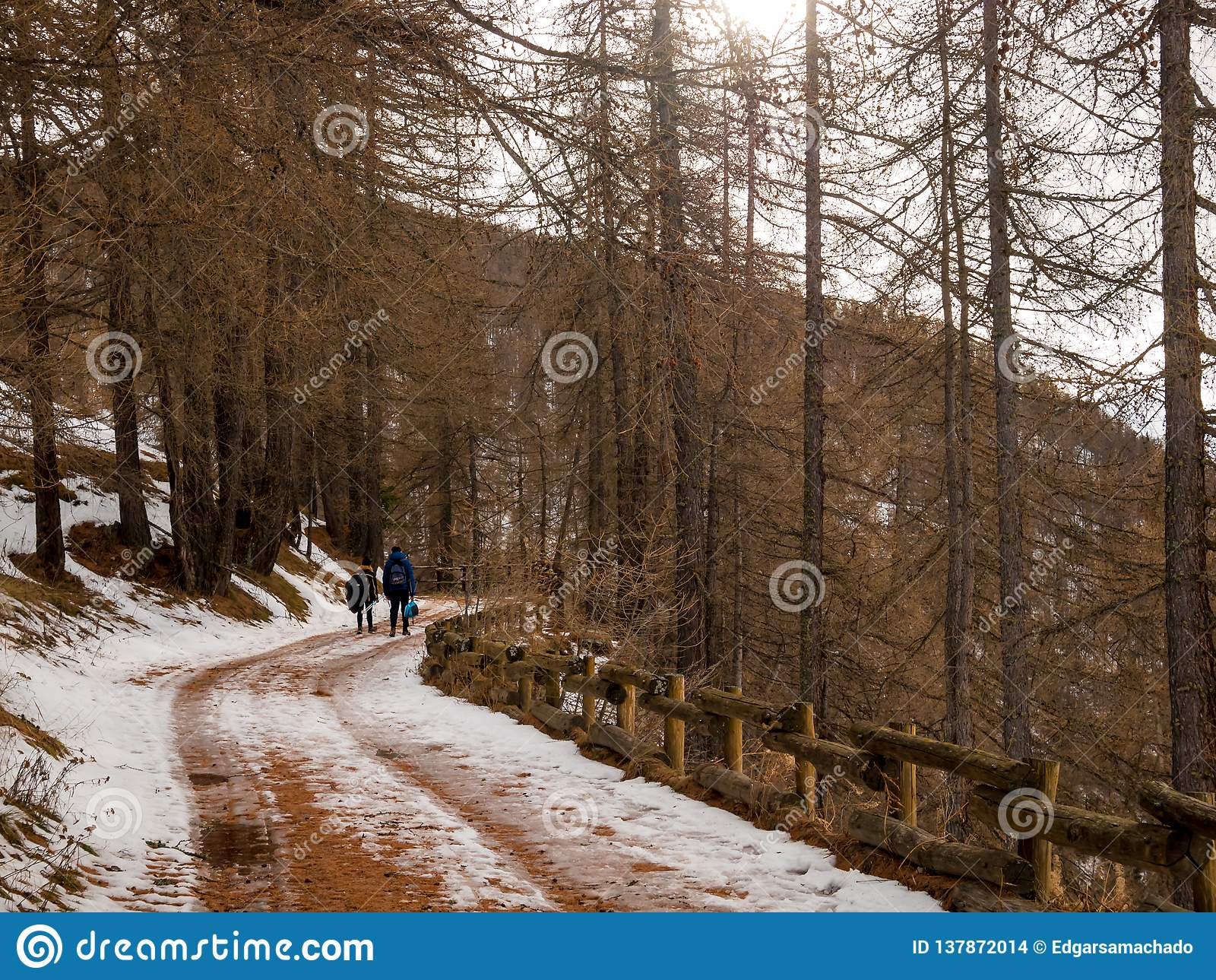 Paar geht durch Wald im Schnee