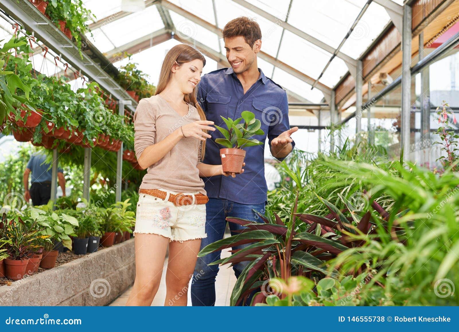 Paar kauft Anlagen in Garten-Center