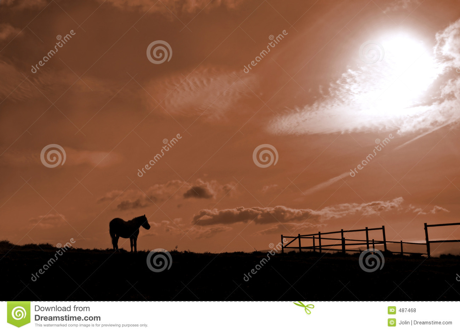 Paard en stal