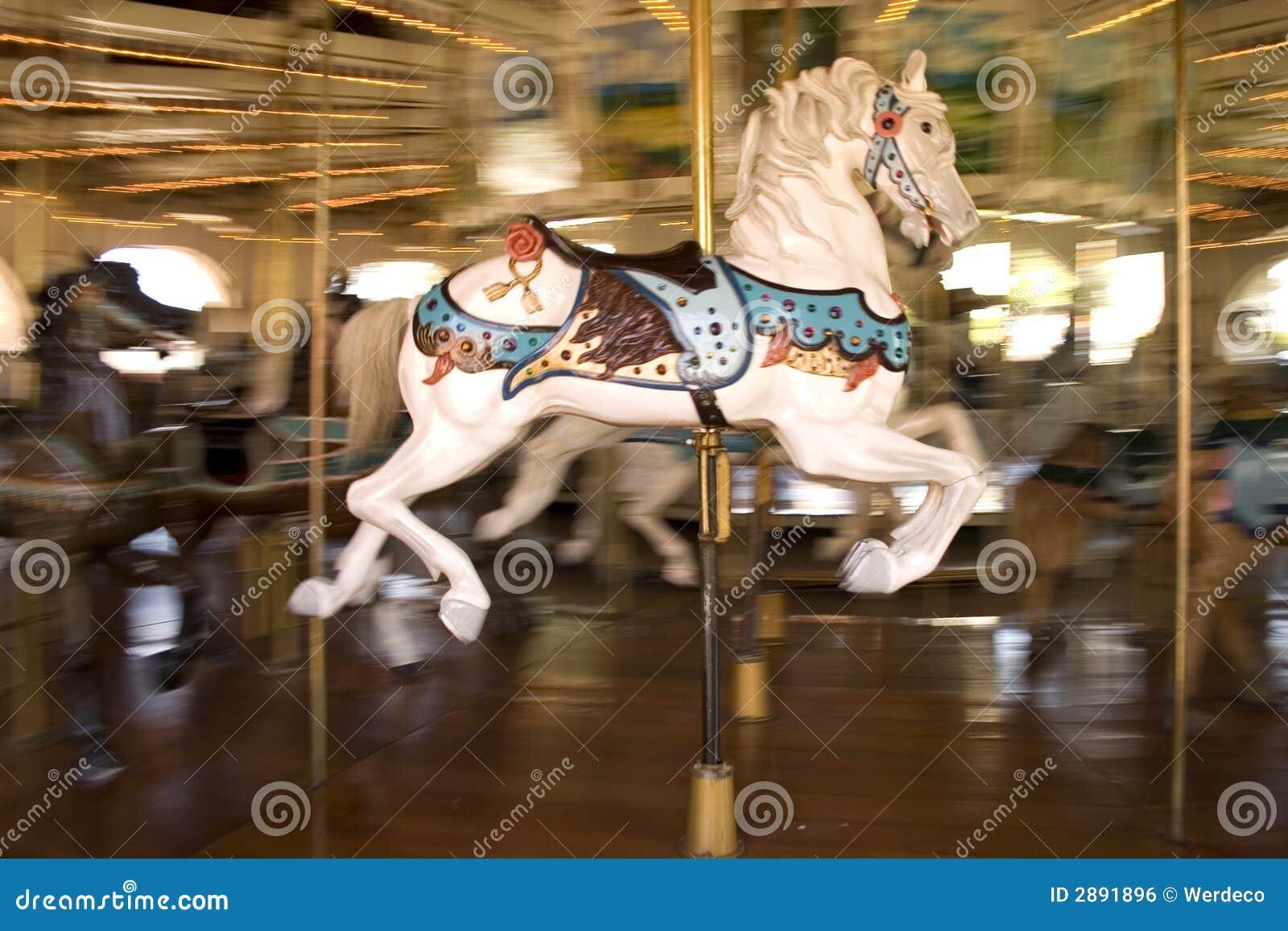 Paard vrolijk-gaan-rond