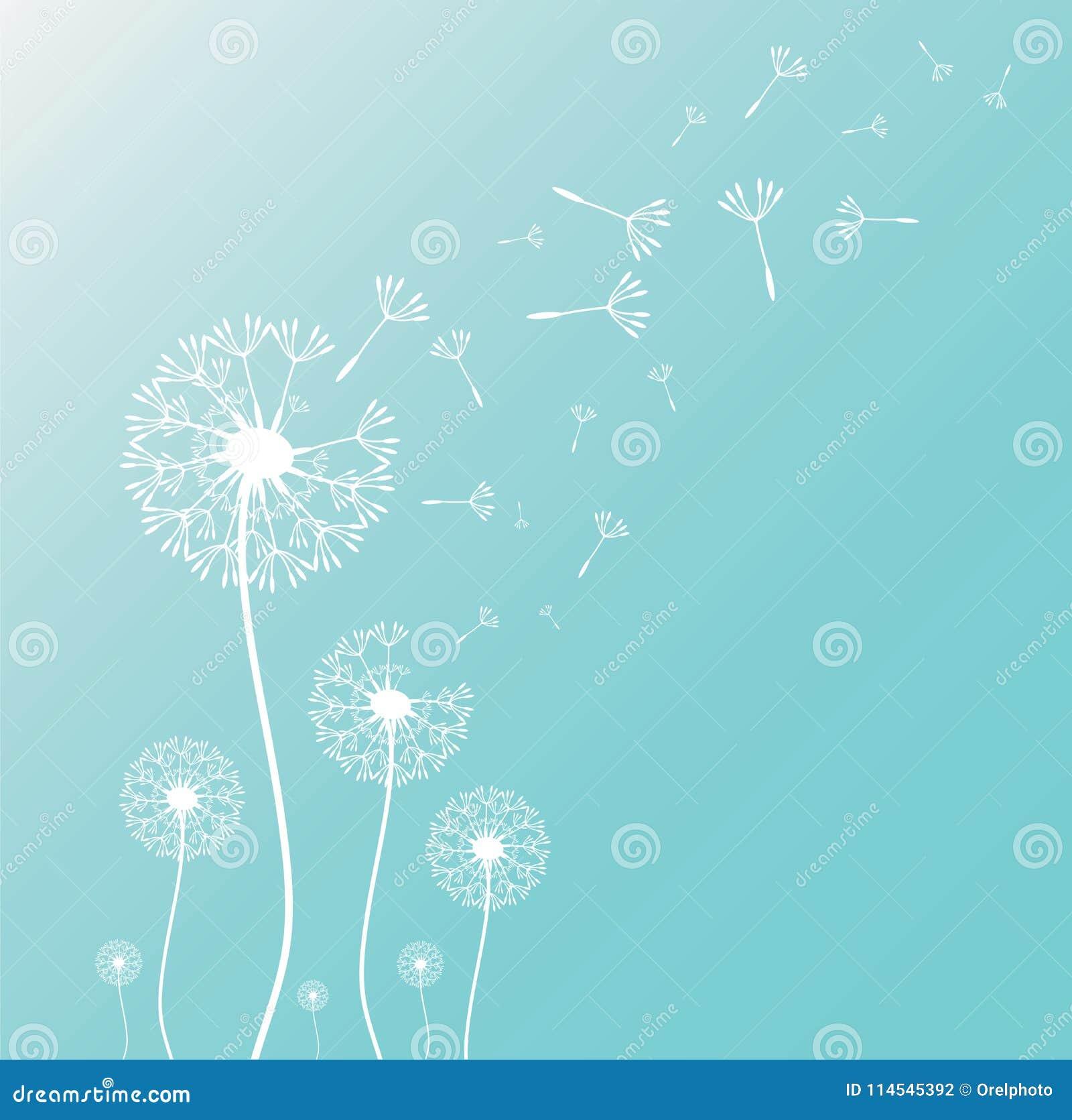 Paardebloemsilhouet met vliegende paardebloemknoppen