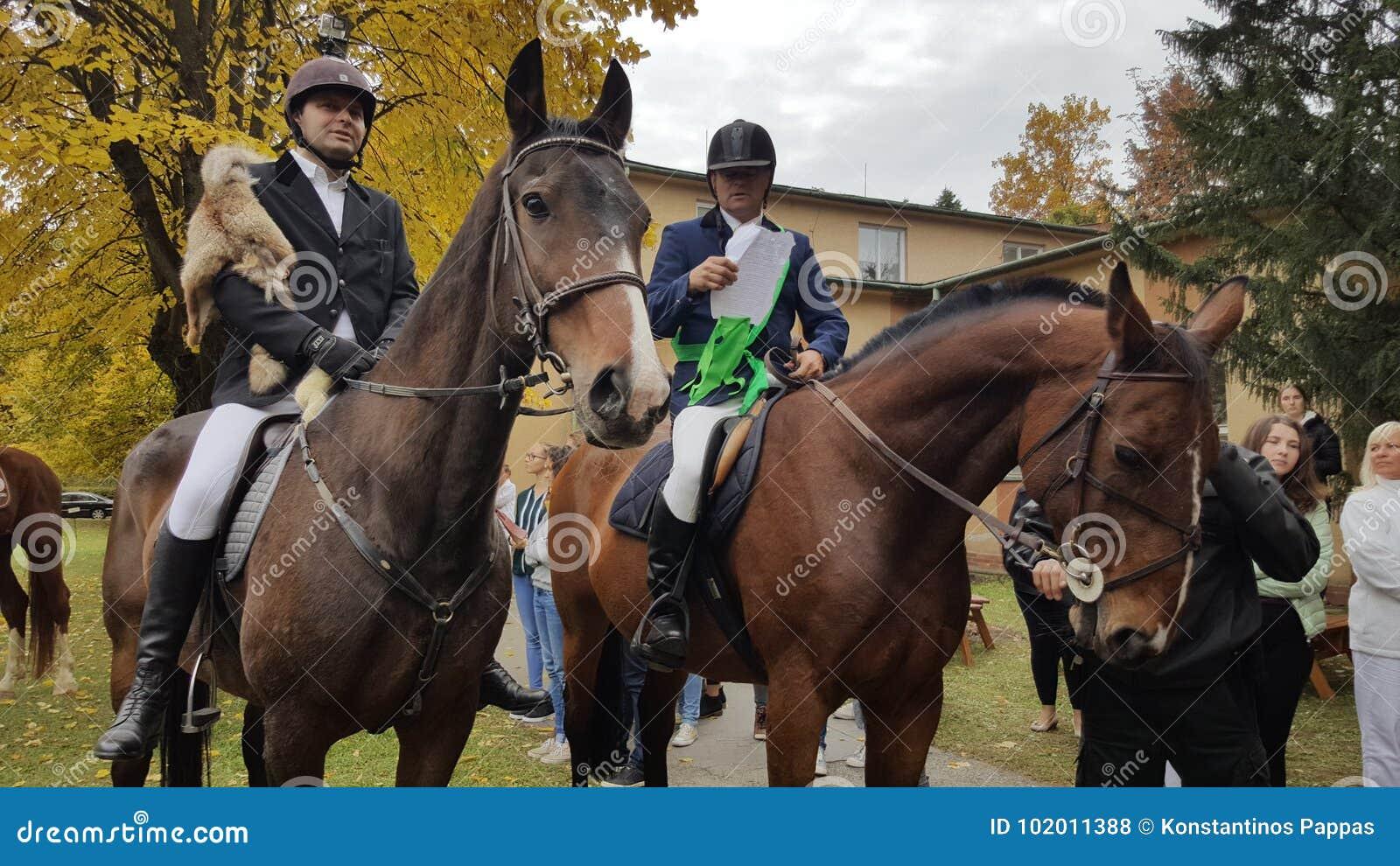 Paarden en ruiters op kosiceuniversiteit op Slowakije