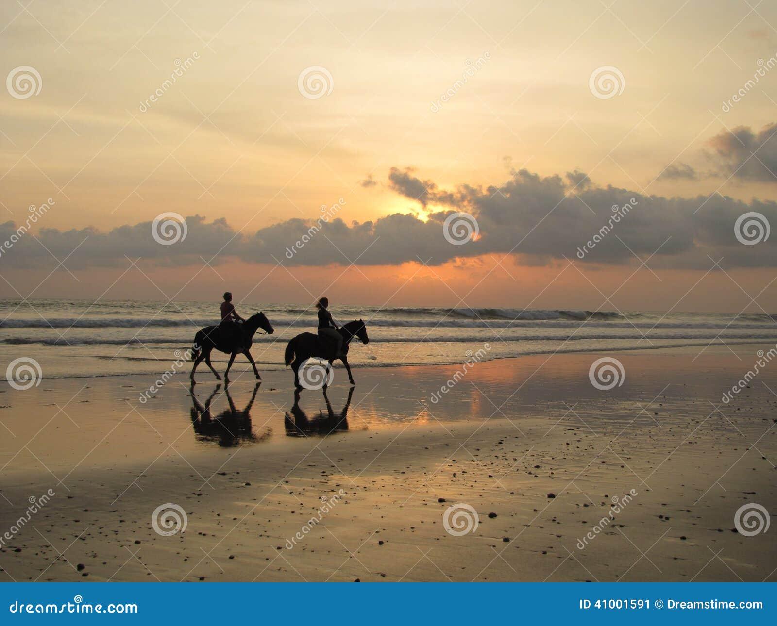 Paarden op zonsondergangstrand