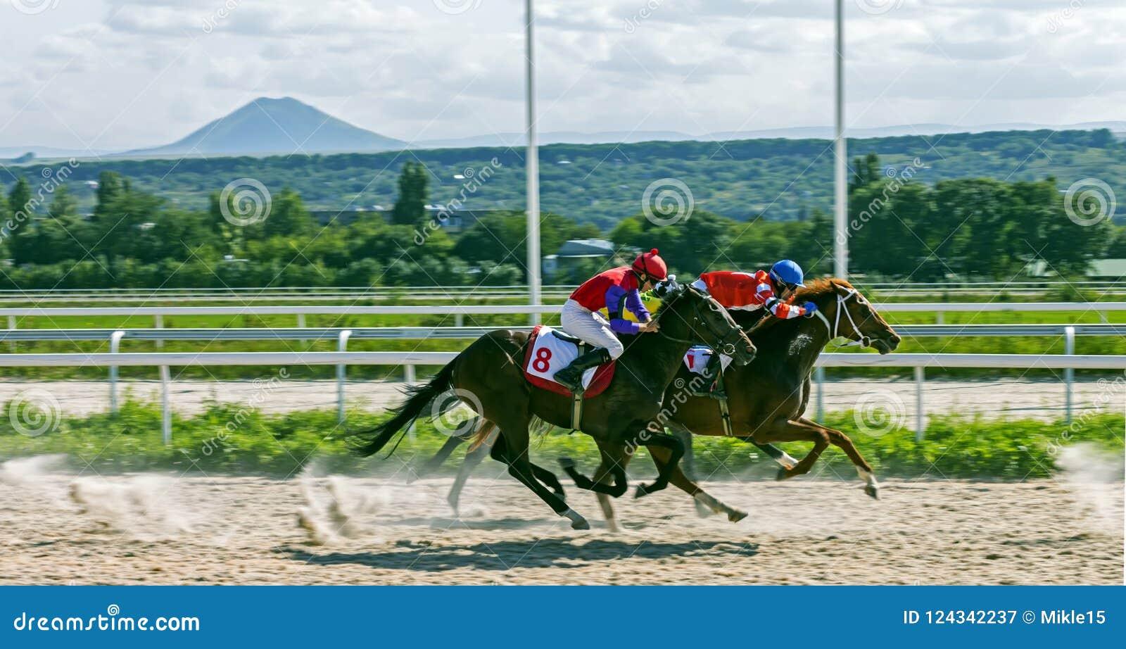 Paardenrennen voor de prijs van Grote Sprint in Pyatigorsk