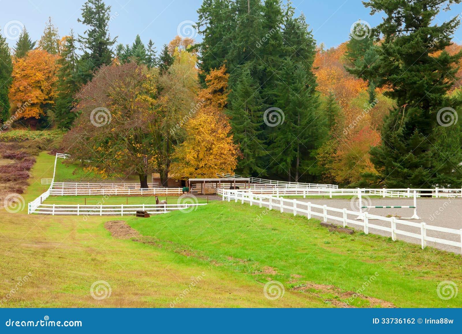 Paardlandbouwbedrijf met witte omheining en dalings kleurrijke bladeren.