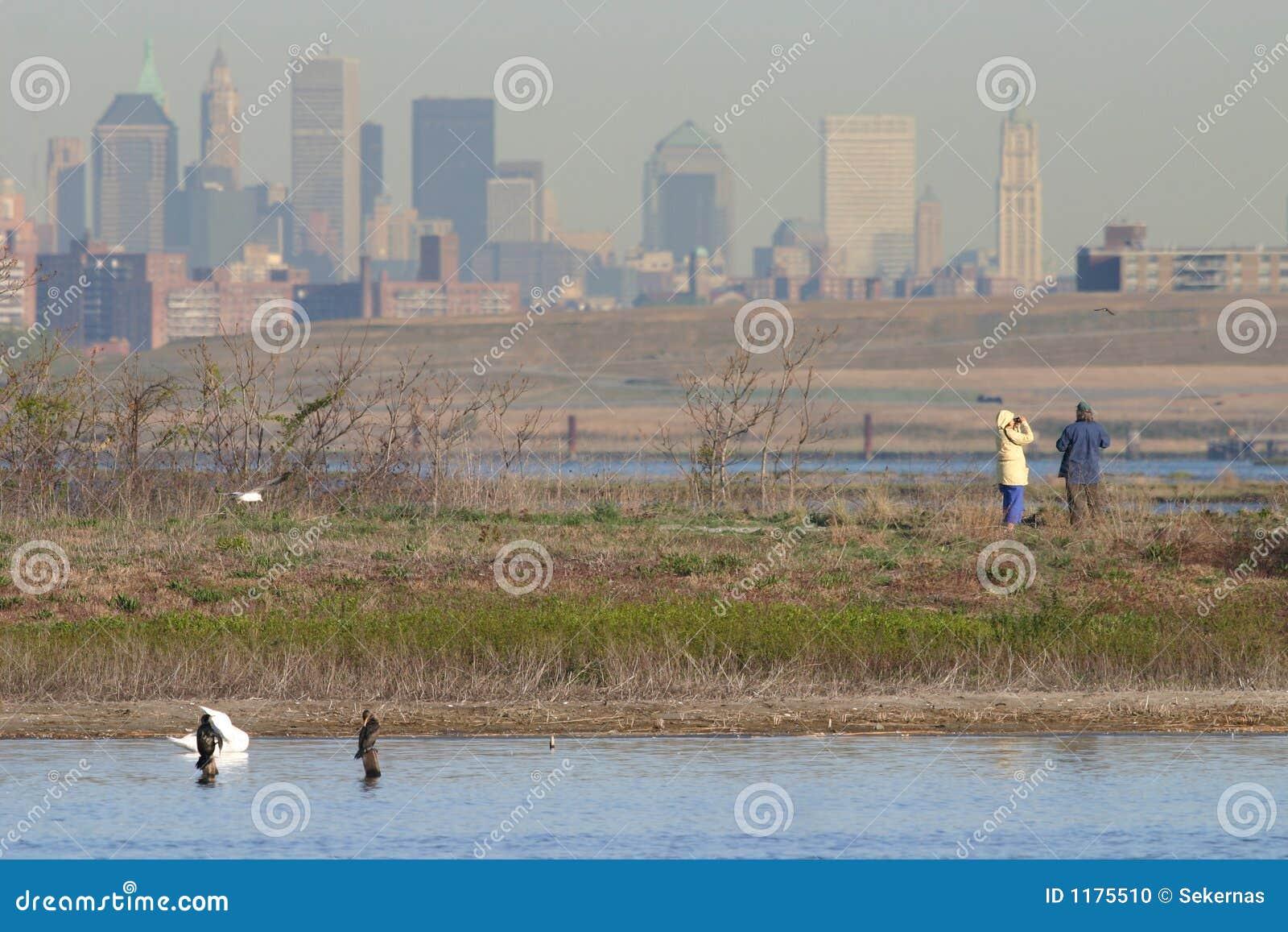 Paare, die mit Manhattan-Skylinehintergrund birding sind