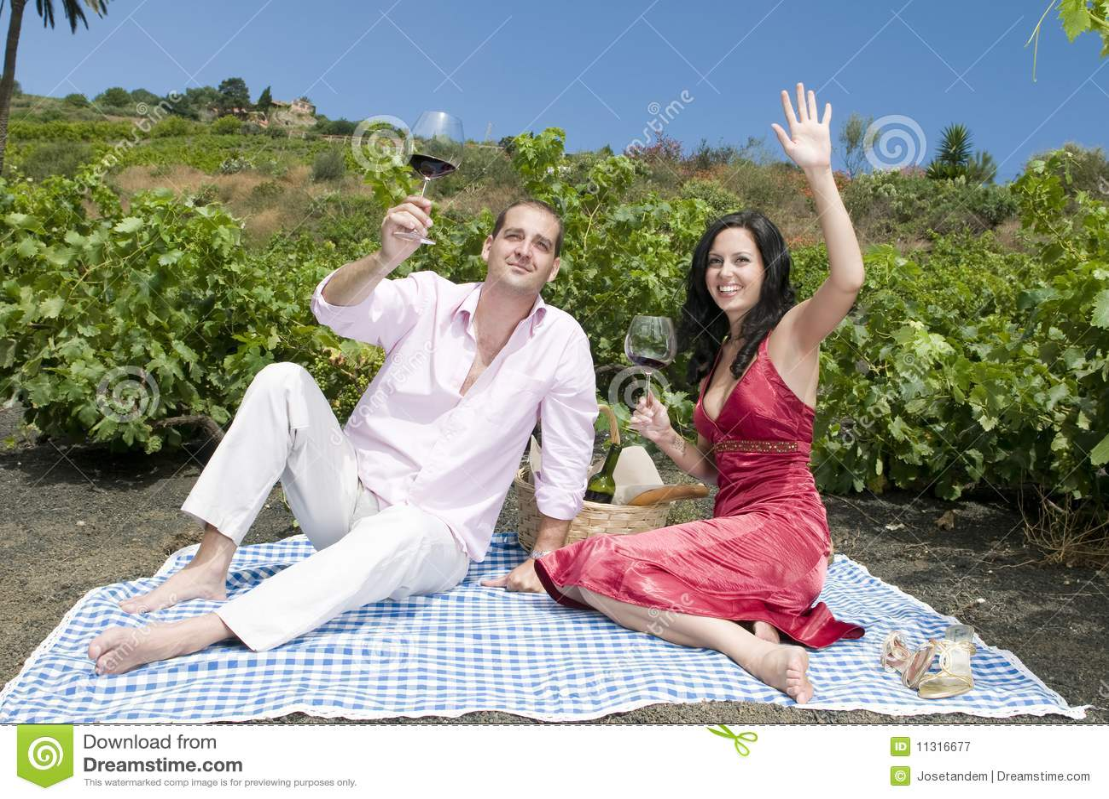 Paare in einem Picknick in einem Weinbergprobieren wine