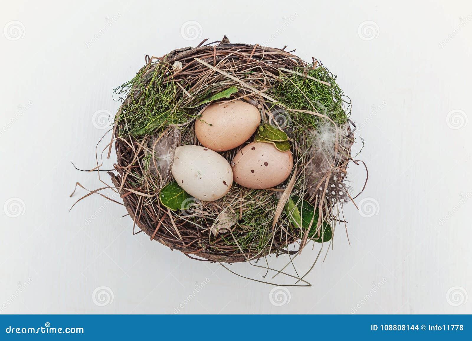 Paasei in nest op rustieke houten planken