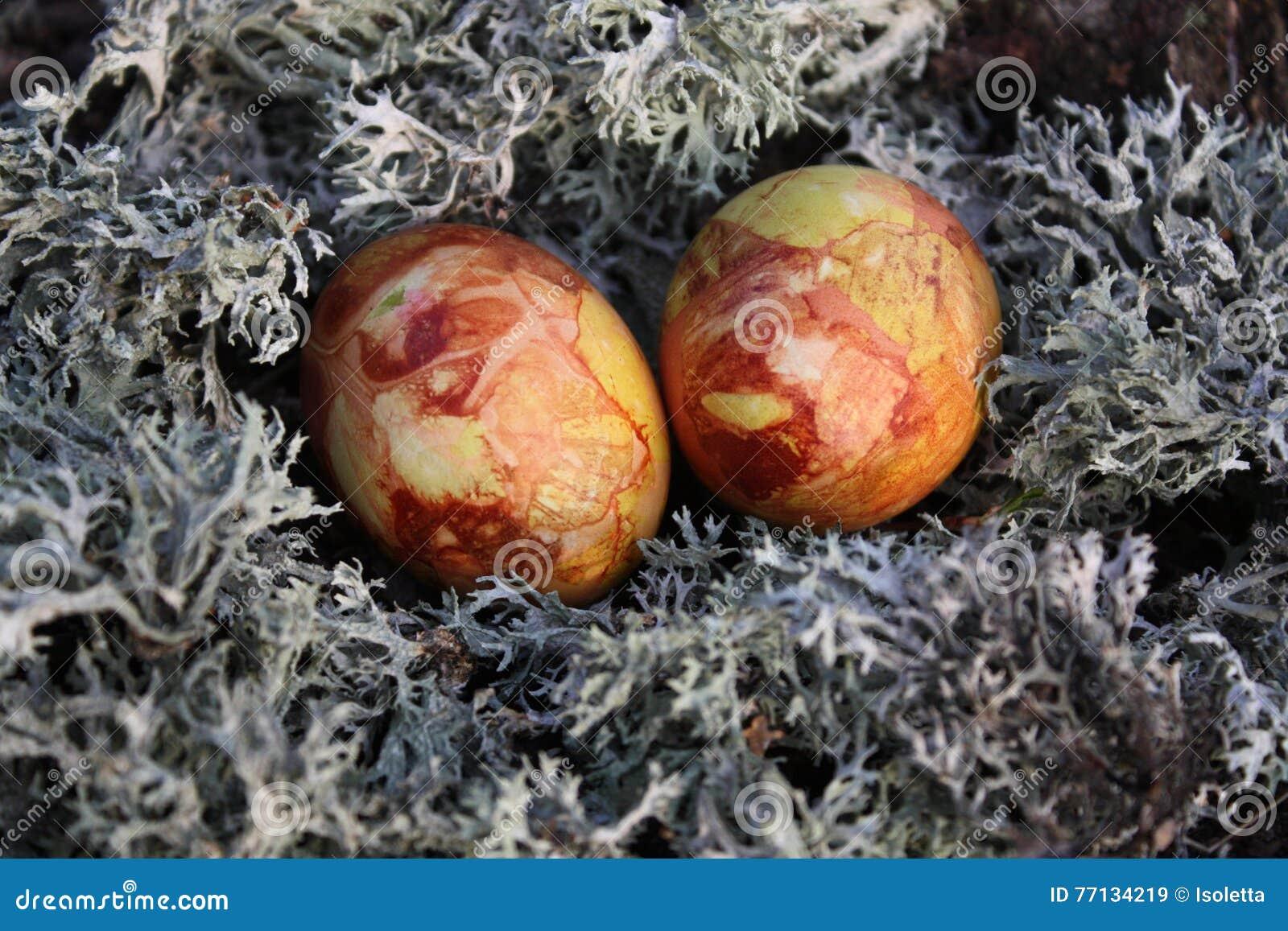 Paaseieren op een mos
