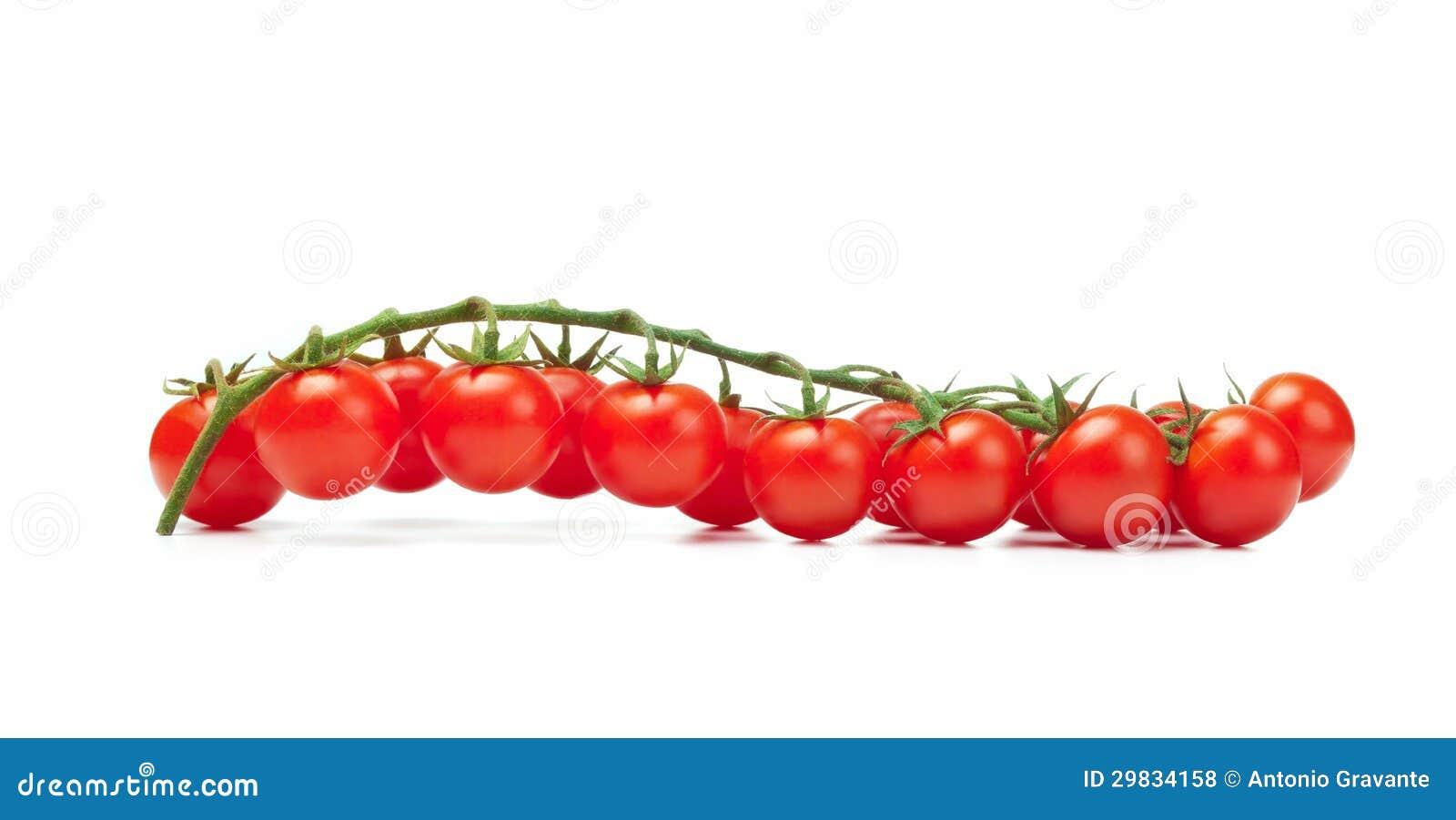 Pachino dos tomates