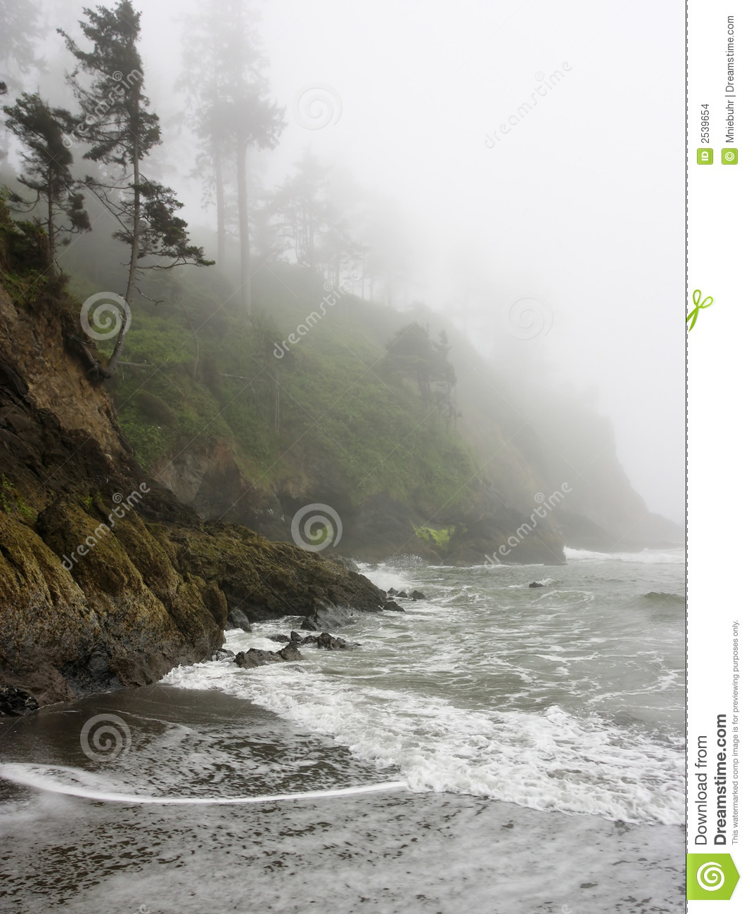 Pacific Coast Shoreline With Rocky Cliffs And Fog Stock