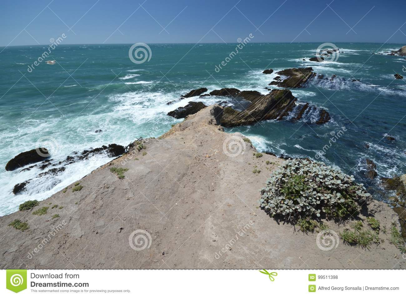 Pacific coasts Impressions of Point Arena Light, California USA
