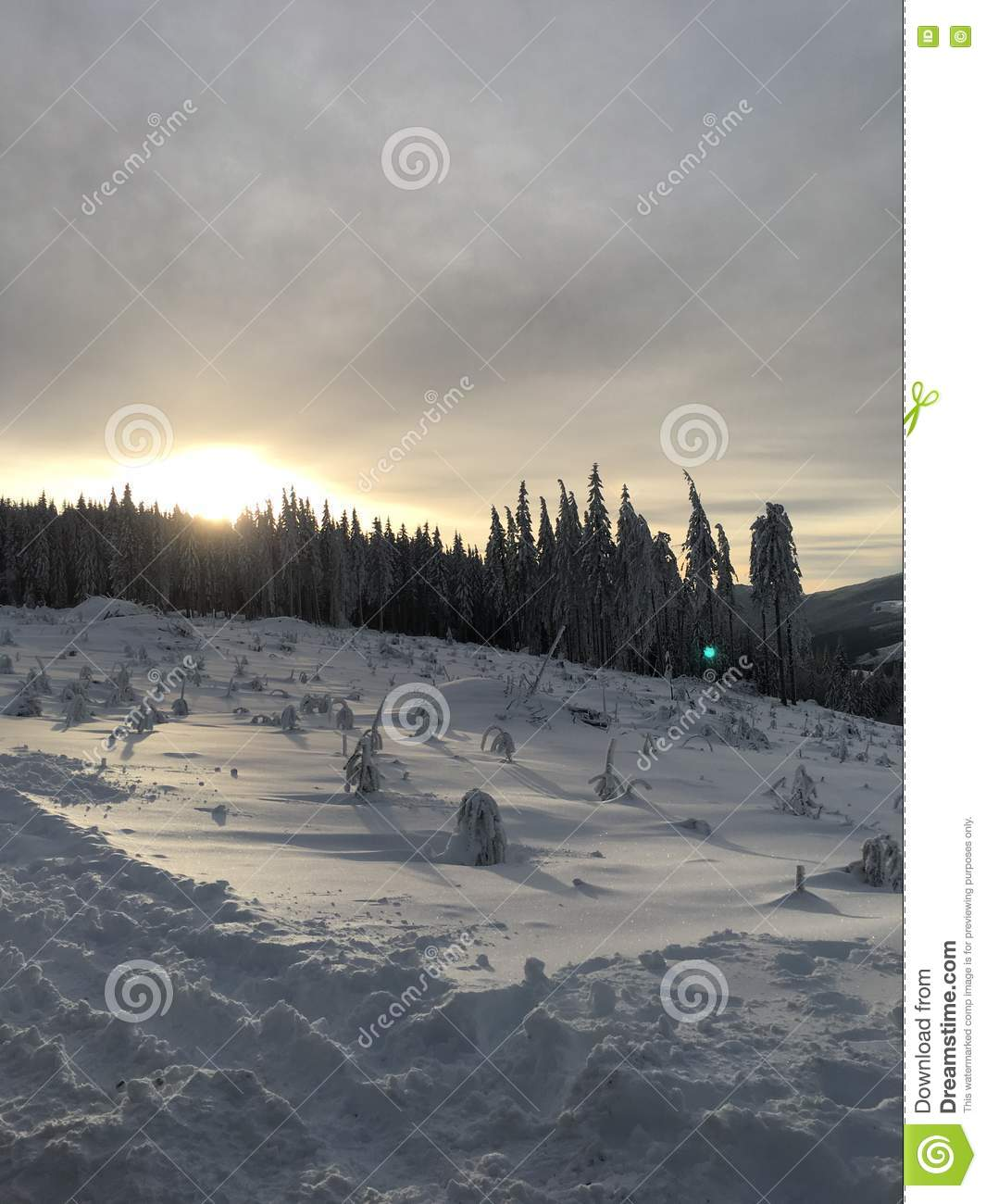 Pacific north west mountain with