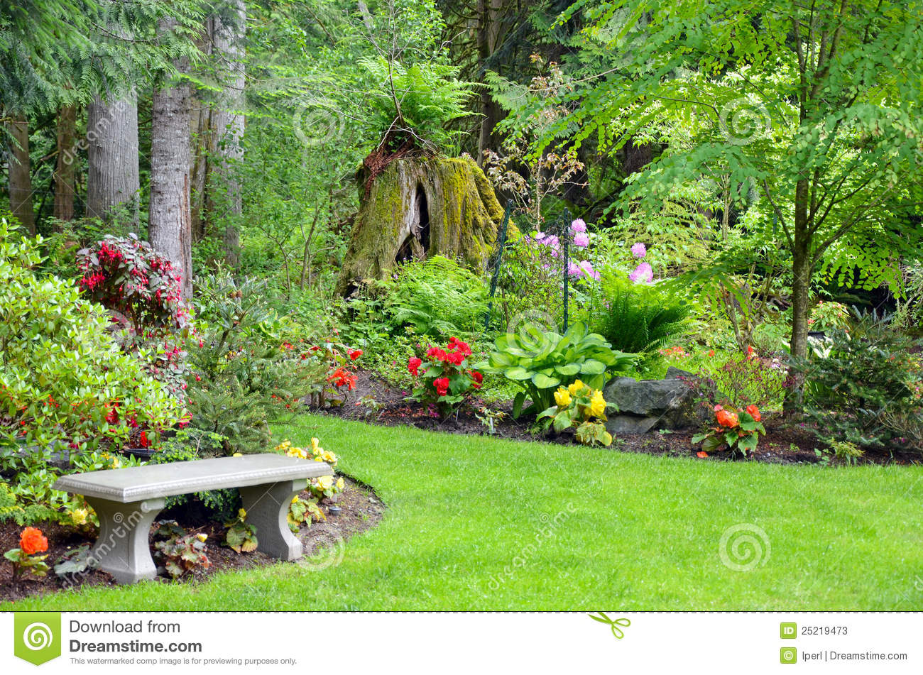 Pacific northwest garden stock image image of foliage for Gardening and landscaping