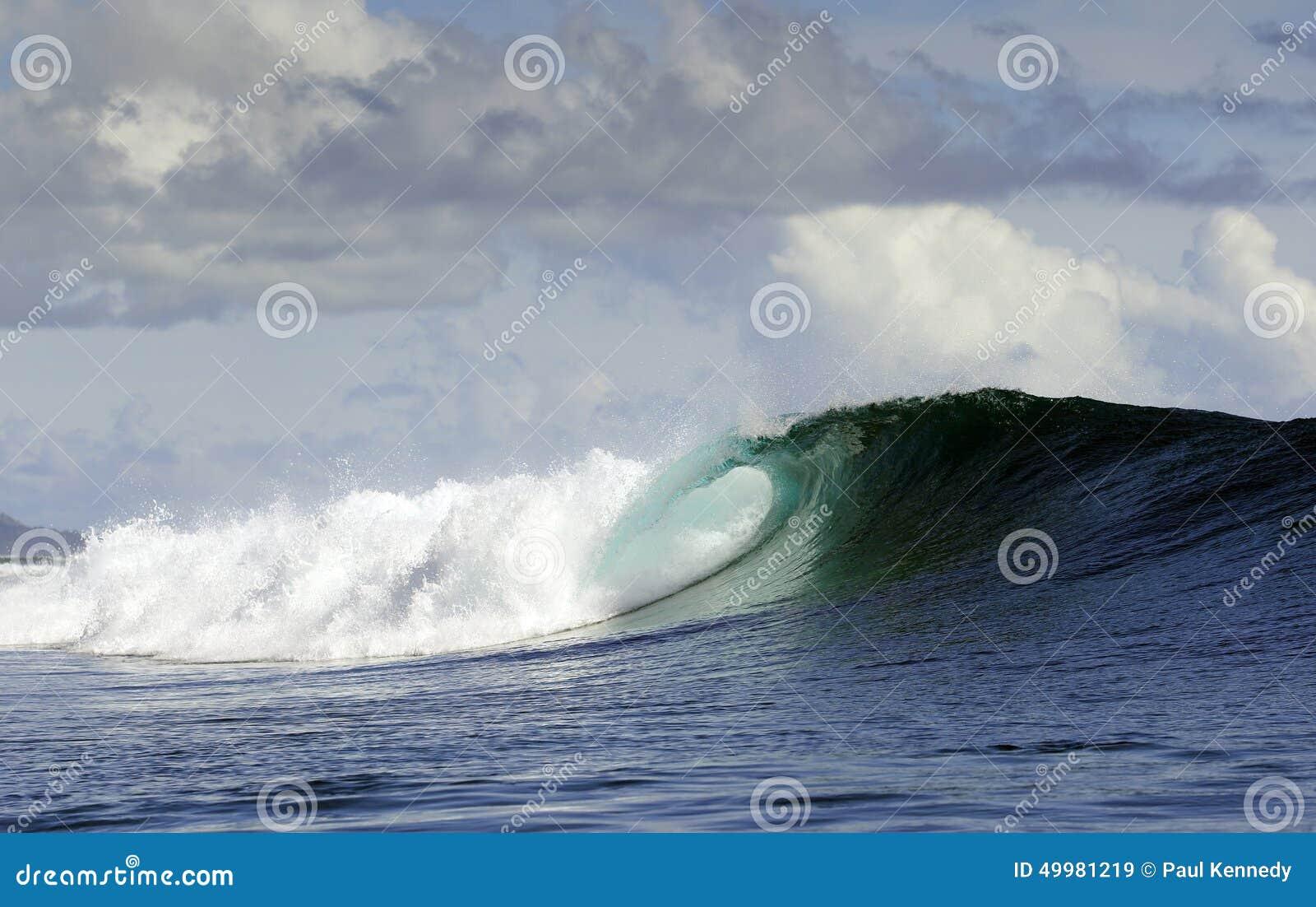 Pacific Ocean surfing wave
