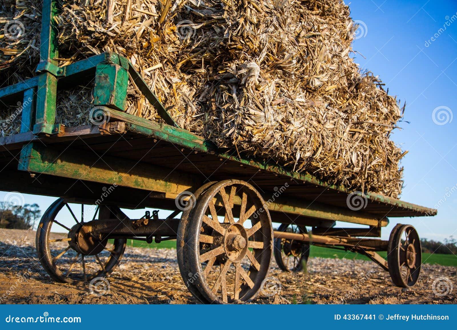 Pacotes de feno empilhados no vagão antigo de amish