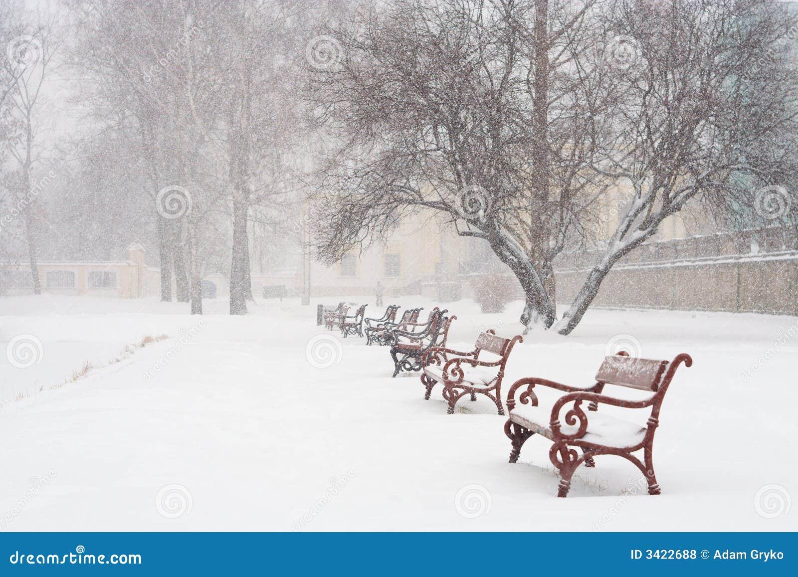 Pada śnieg