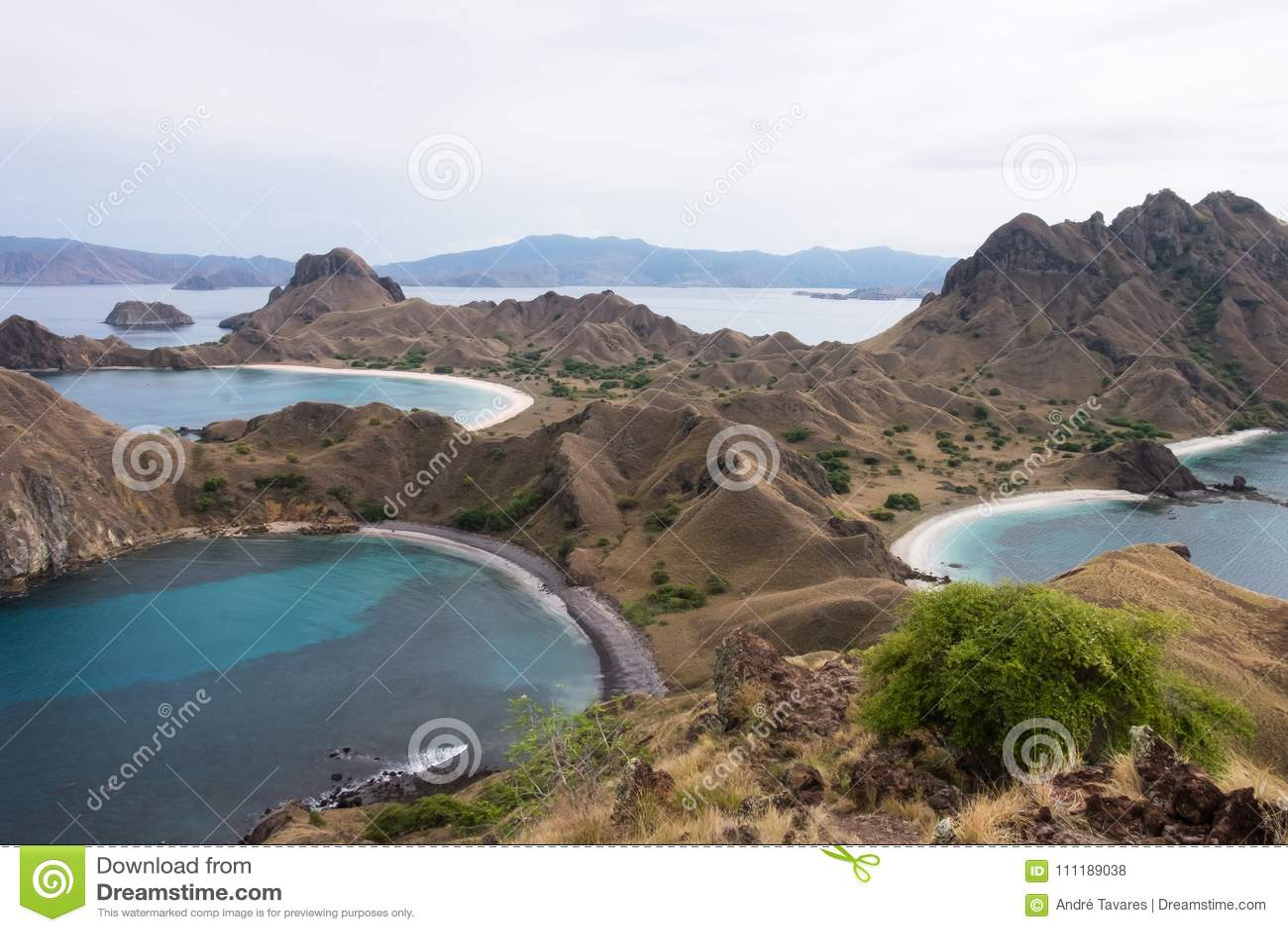Padar Island in Labuan Bajo, Flores Indonesia
