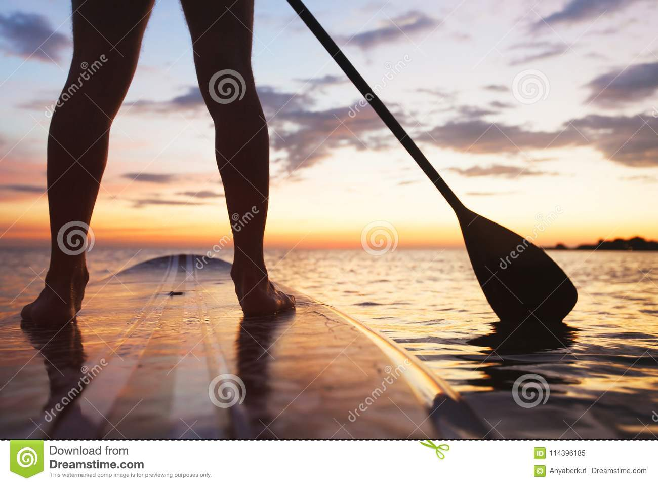 Sup, stand up paddle board in sea