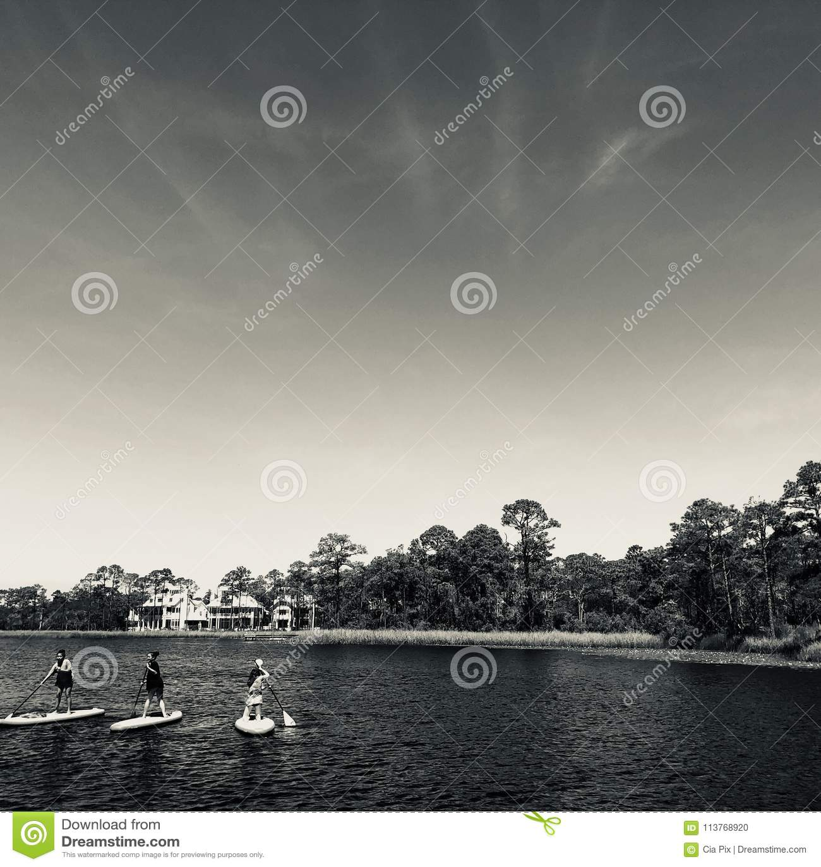 Paddleboarders bij Waterverftoevlucht