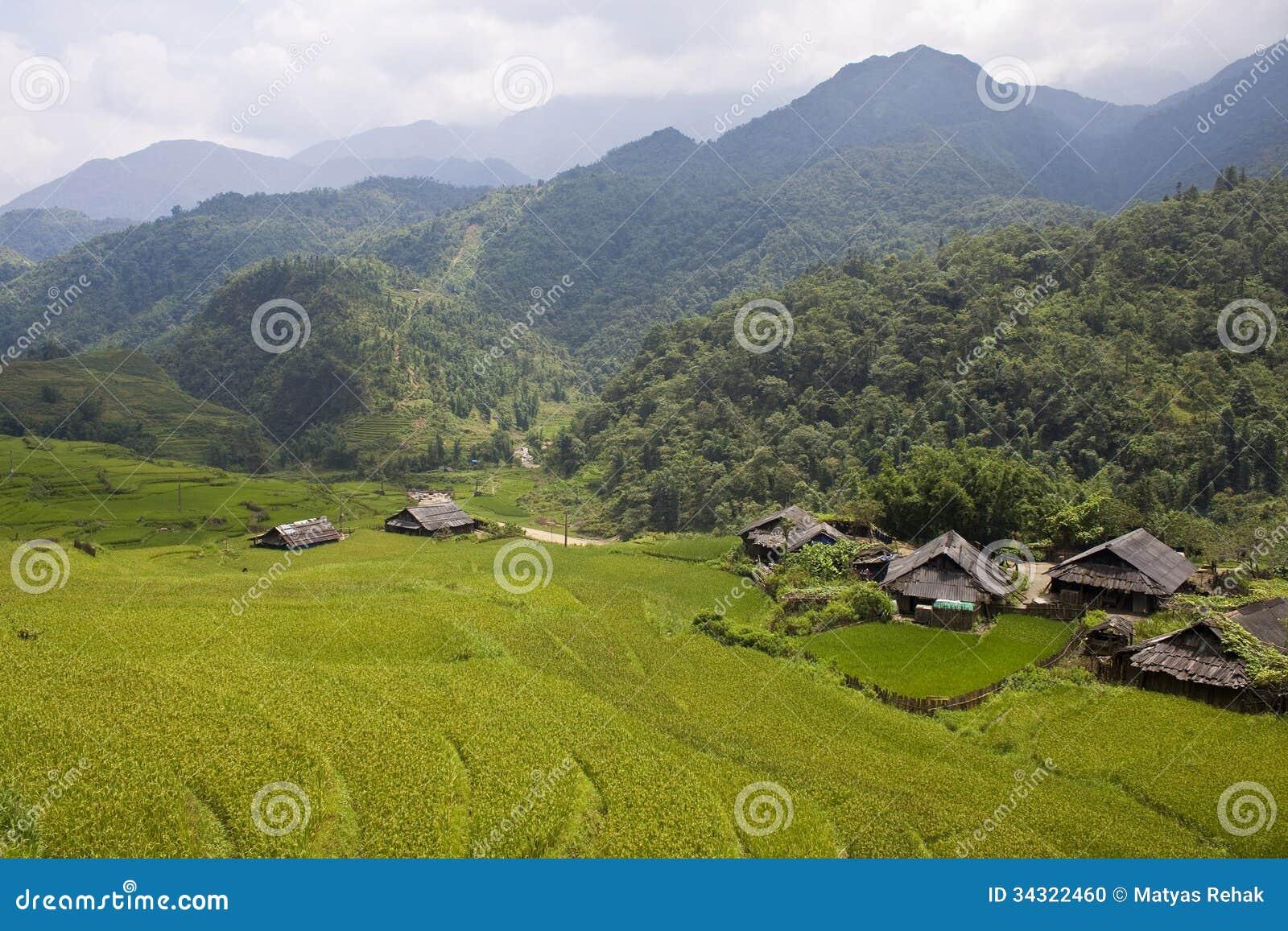 Padiegebieden, dorp en een wildernis