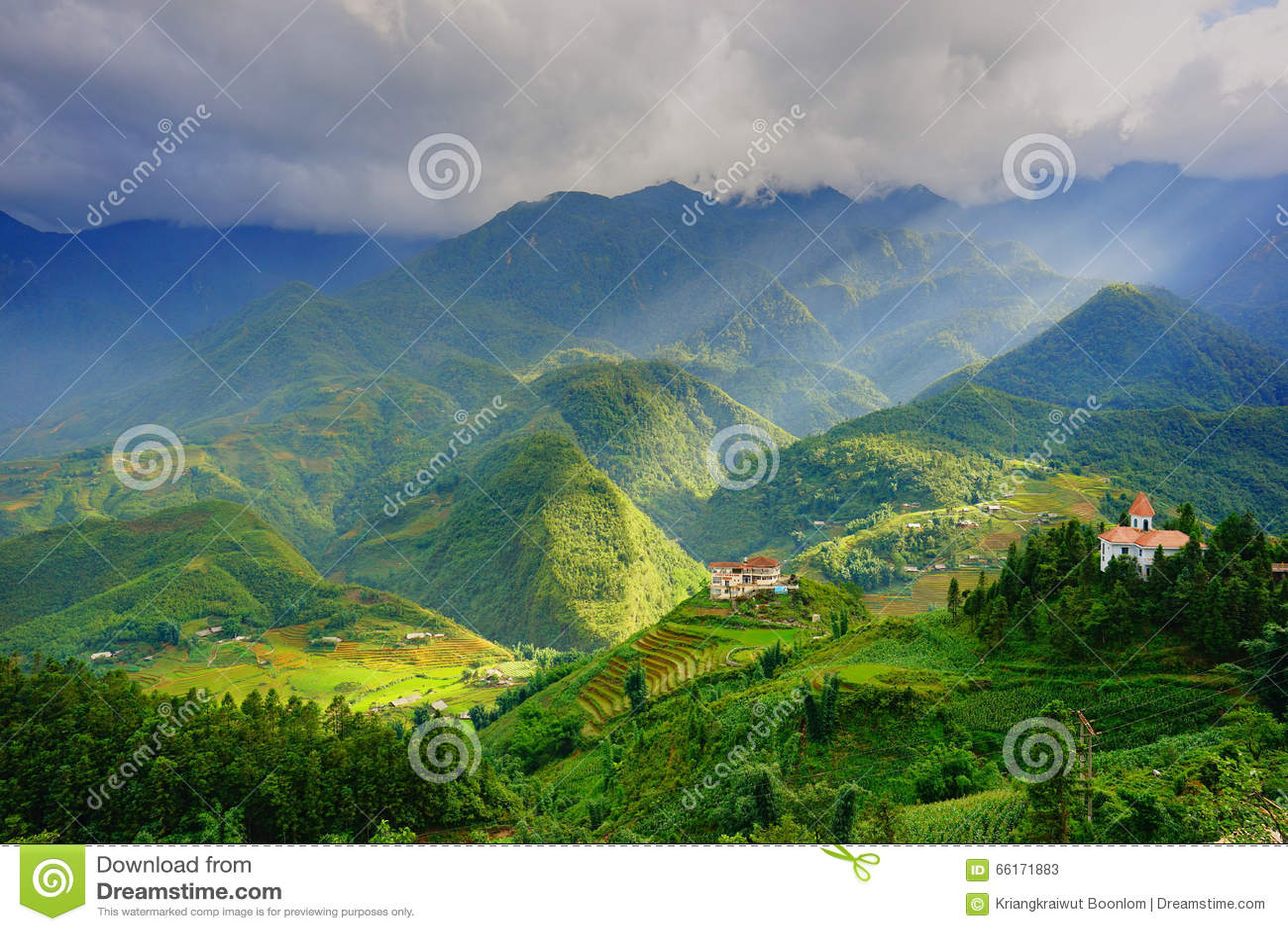 Padievelden op terrasvormig in rainny seizoen bij SAPA, Lao Cai, Vietnam