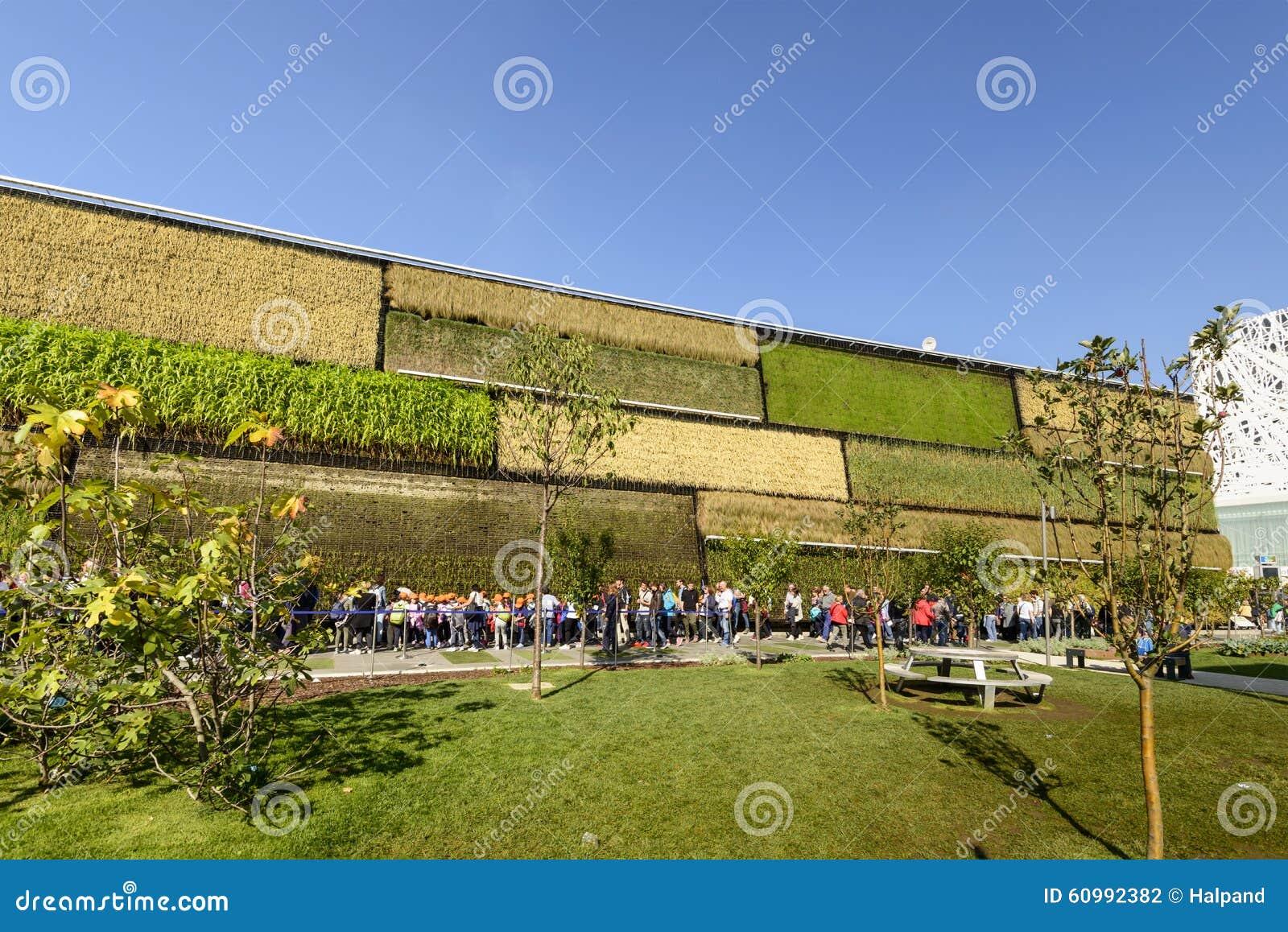 Padiglione esterno facente la coda di israele expo milano for Progetti di piantagione