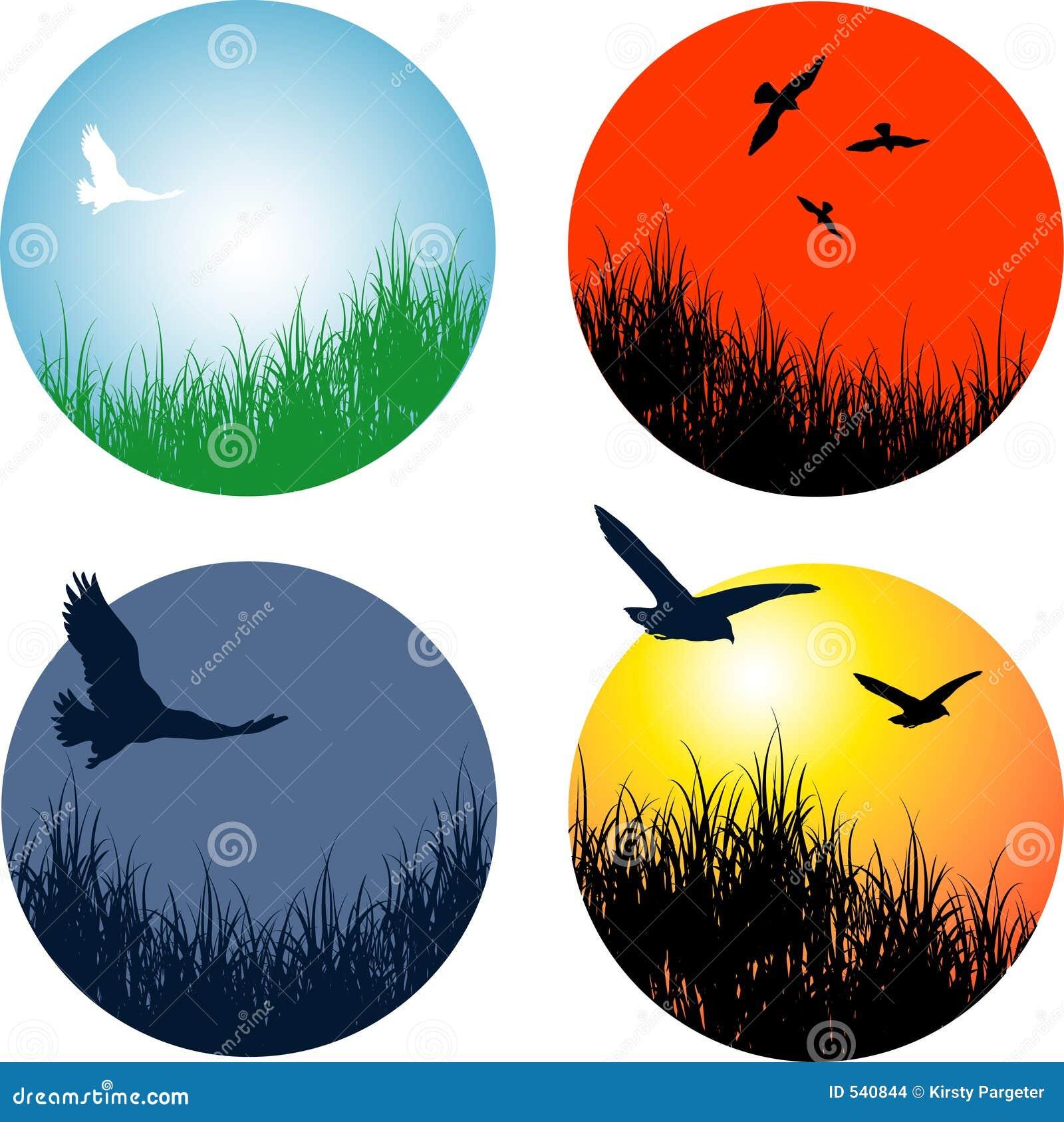Paesaggi con gli uccelli