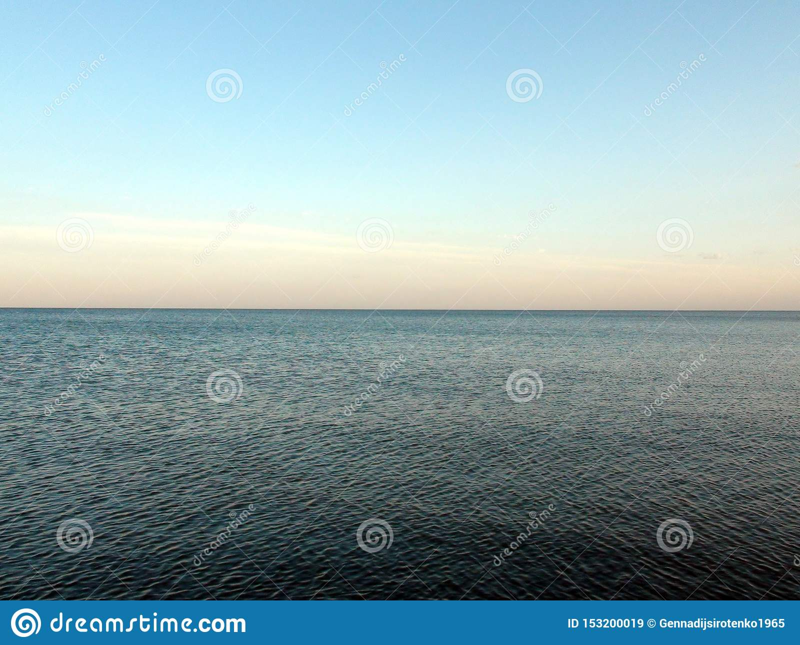 Paesaggi della flora del mare di Azov e del mare che uguagliano i paesaggi vicino alla città di Primorsk della regione di Zaporiz