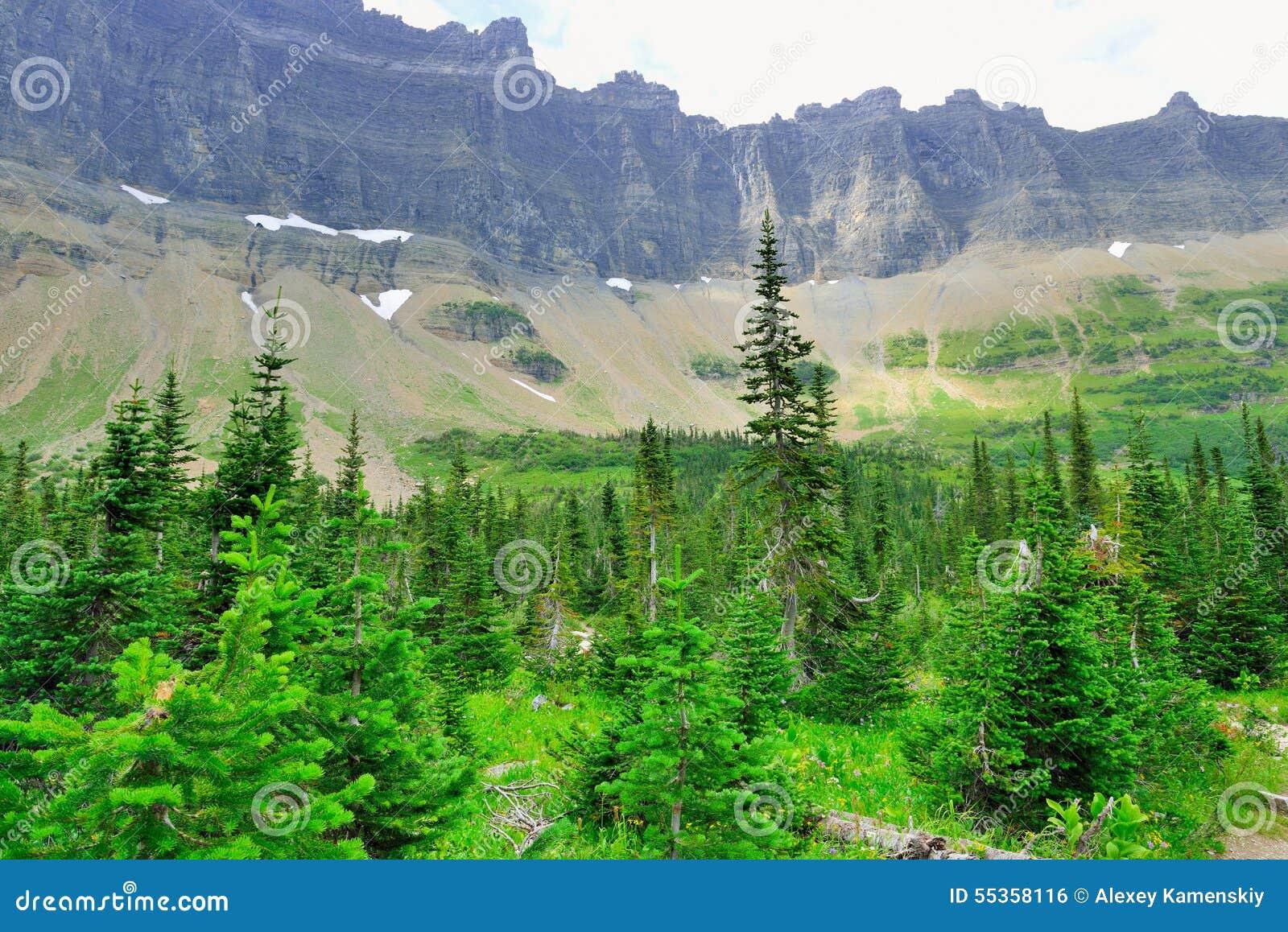 Paesaggio alpino del Glacier National Park