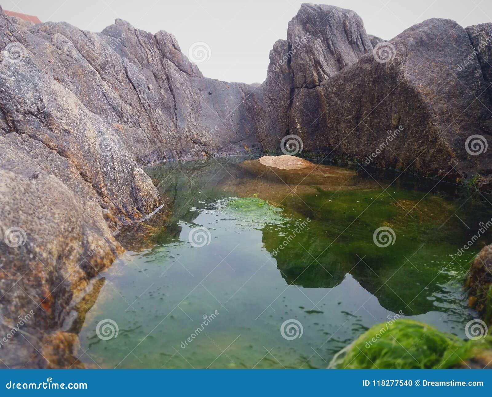 Paesaggio astratto di una pozza di acqua