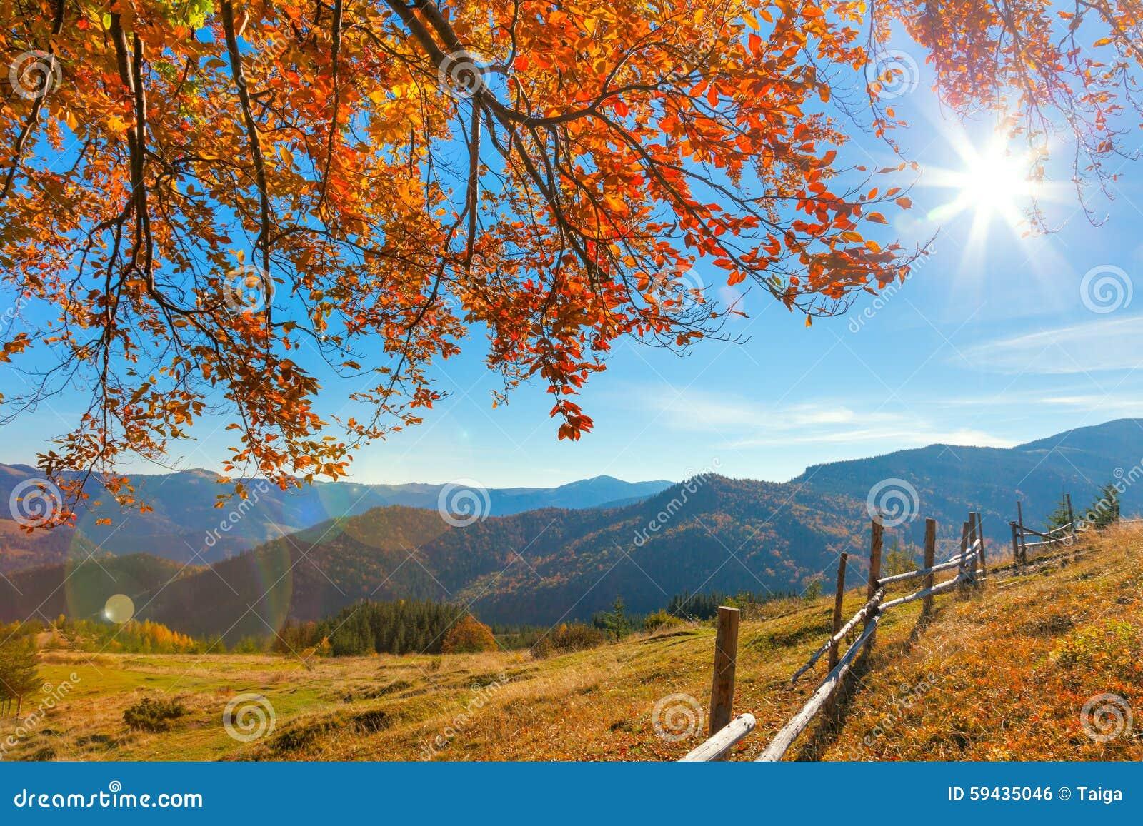 Favoloso Paesaggio Autunnale Di Mattina Jpg20150914202318268455 Con Le  WS48