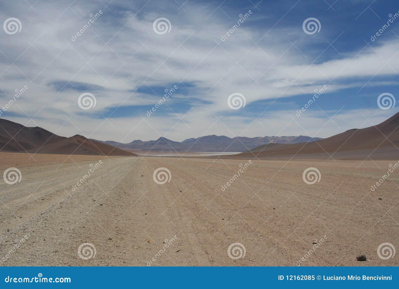 Paesaggio boliviano del plateau