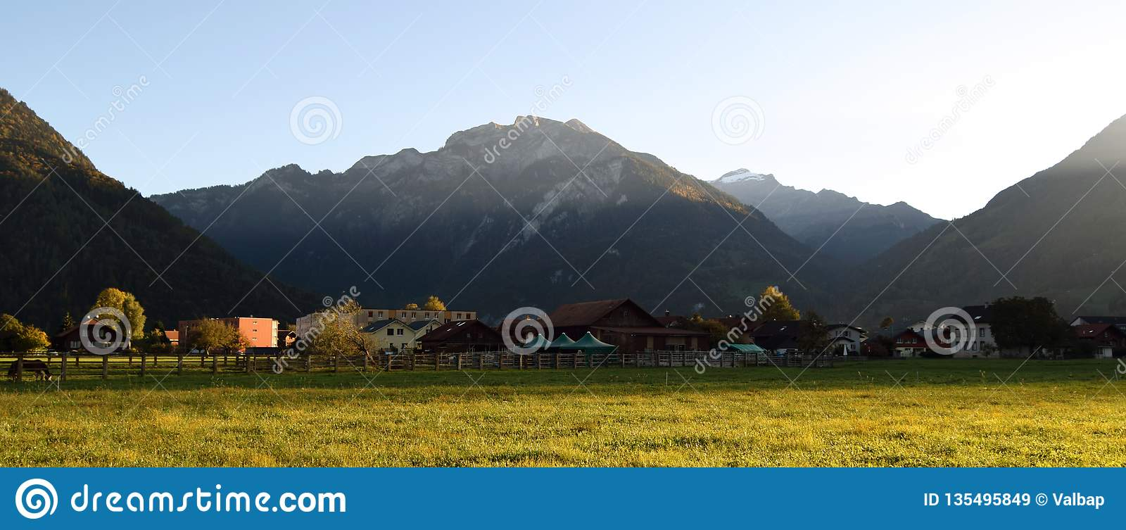 Paesaggio con erba, le montagne, le case, gli alberi ed i cavalli